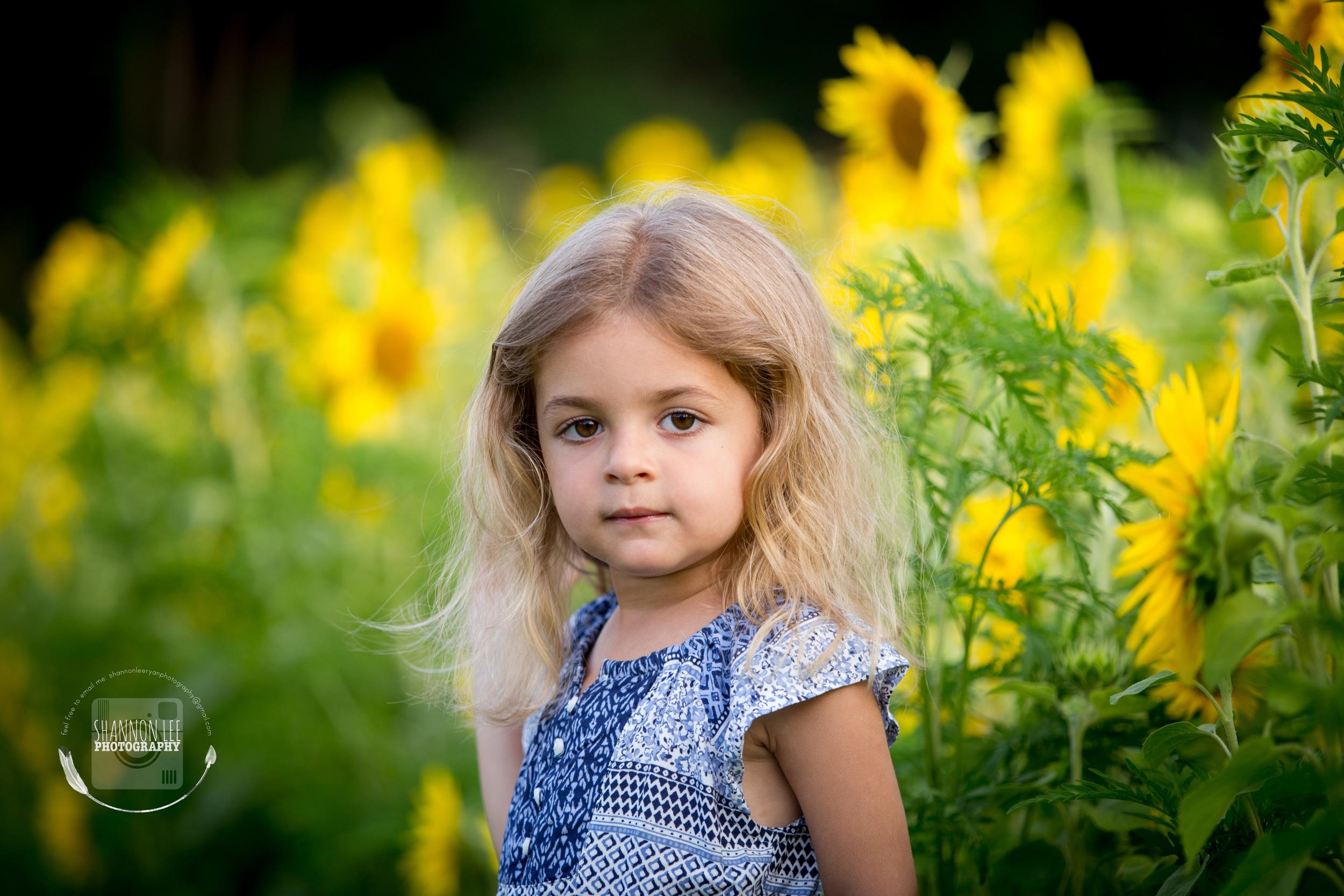 Long Island Sunflower Session Shannon Lee Photography (4).jpg