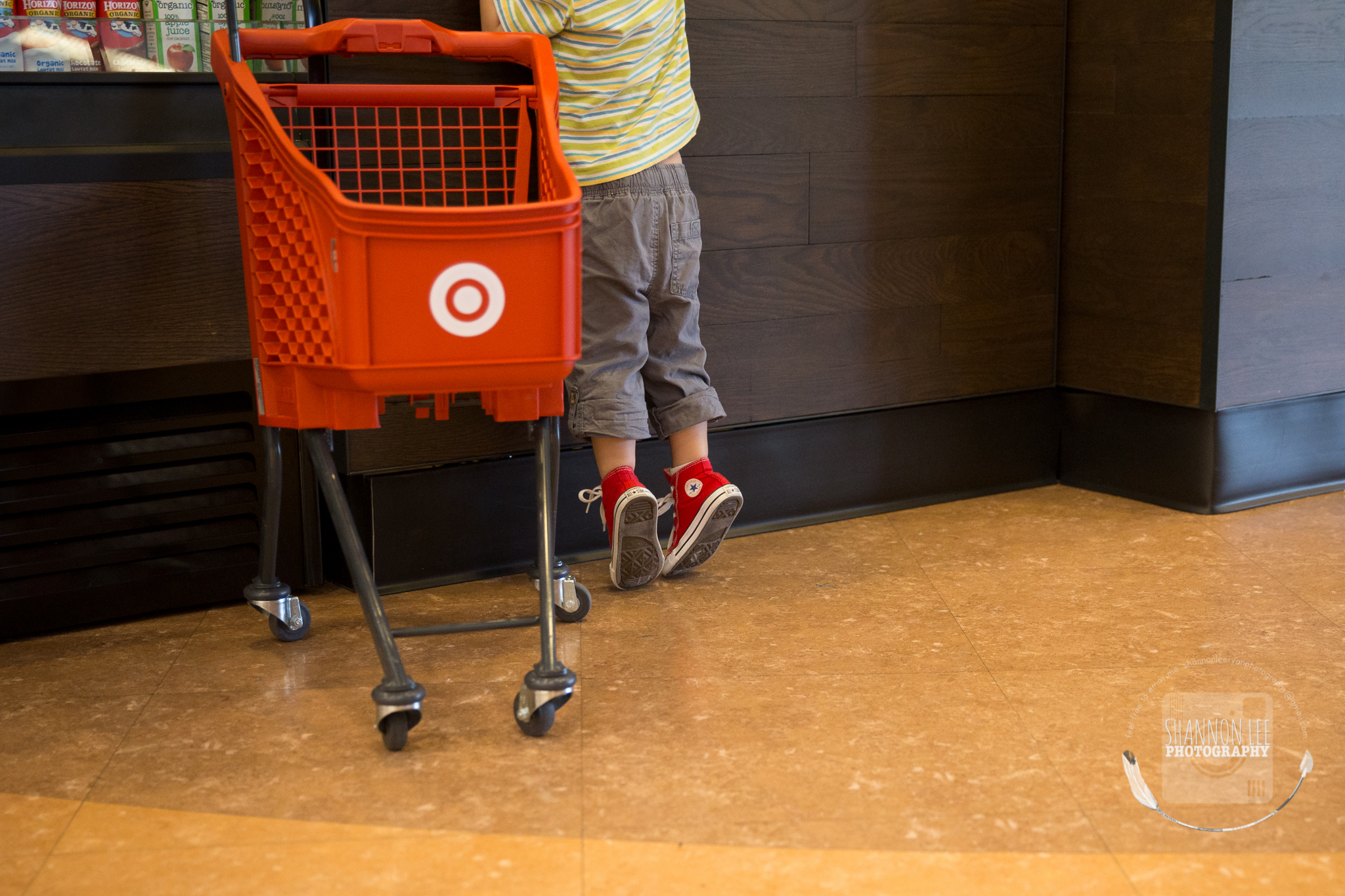 target-little-red-shopping-cart-shannon-lee-photography-long-island-New-York-0978.jpg