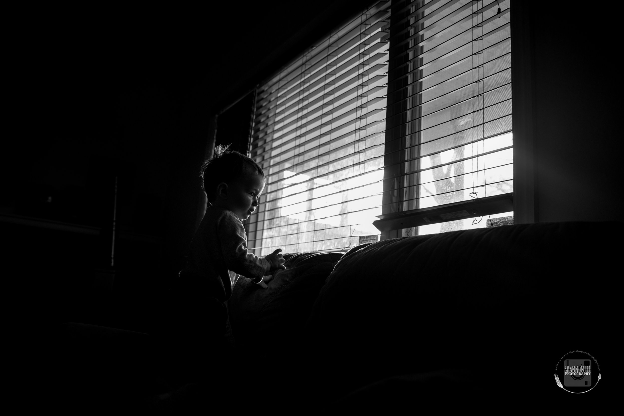 Baby boy loves looking out the window. Love the light highlighting his little features.