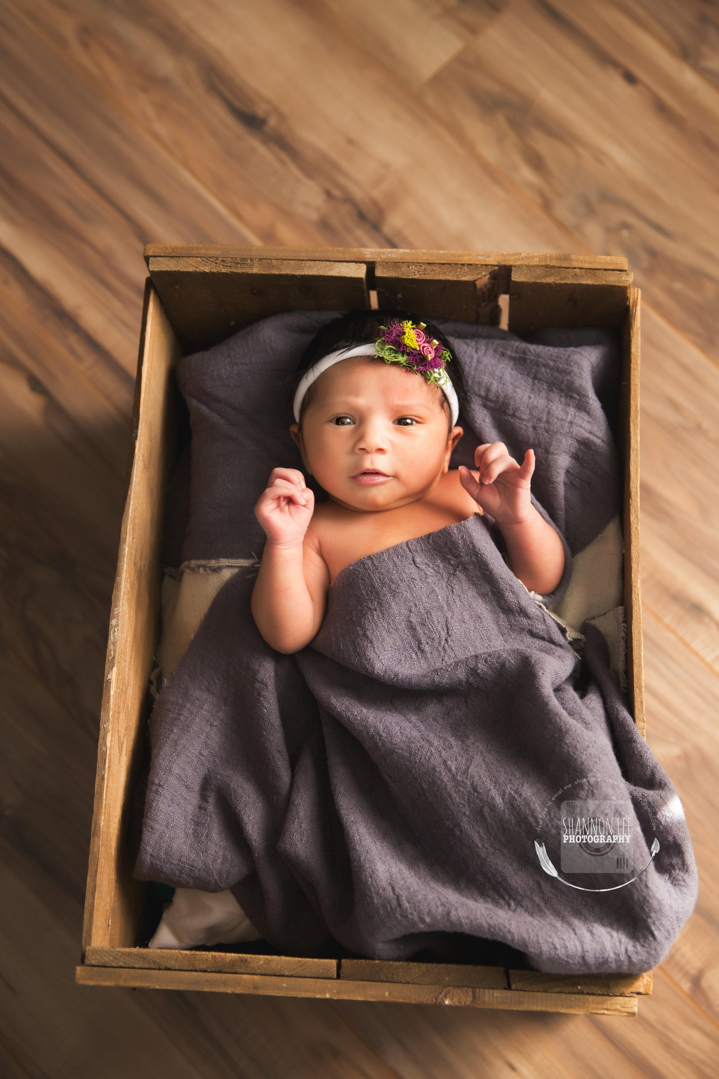 Newborn Photography Shoot| Long Island | Studio| Tieback