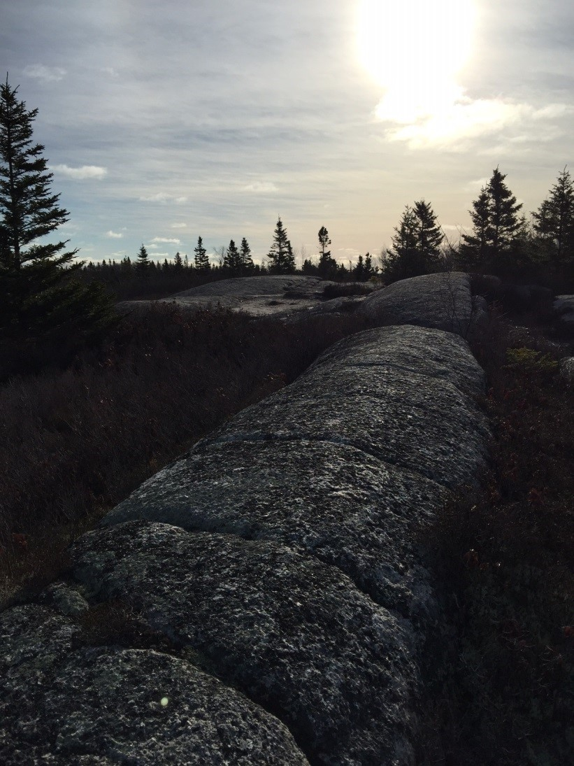 Hiking at The Bluff Wilderness Trail