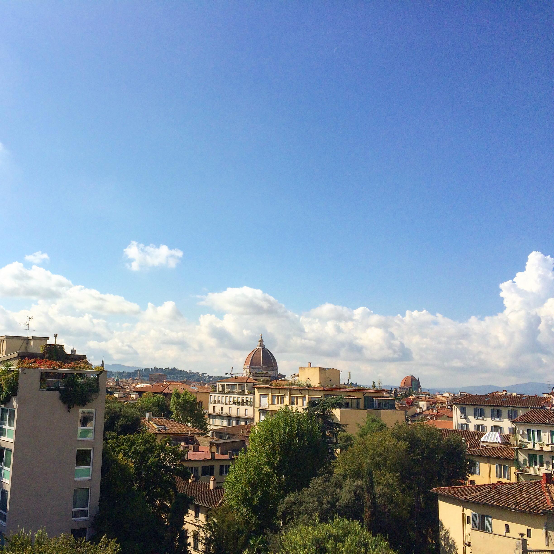 View from the terrace of Iacopo Nardi. Ahhhhhh