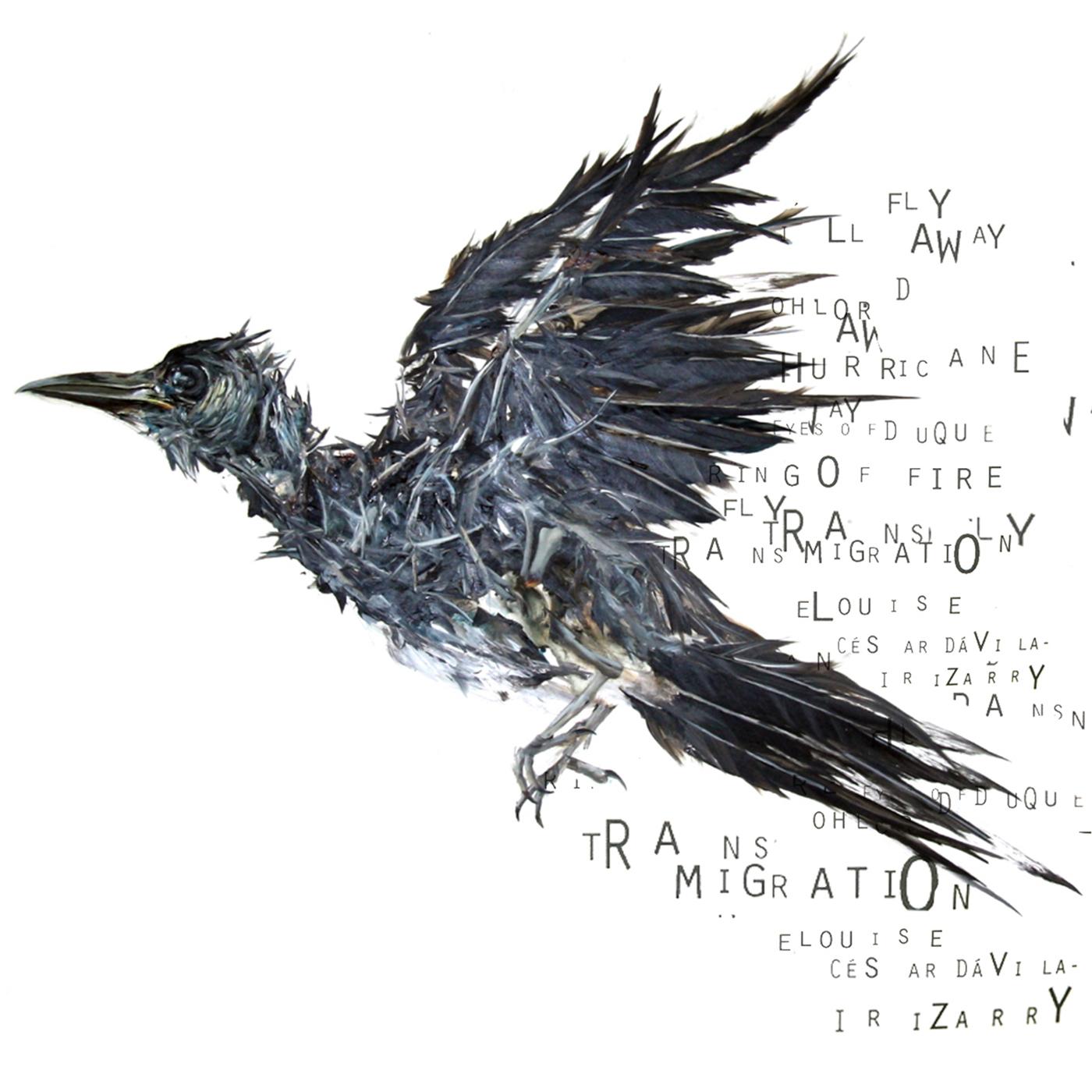 TRANSMIGRATION COVER.press.cdbabyupload.jpg