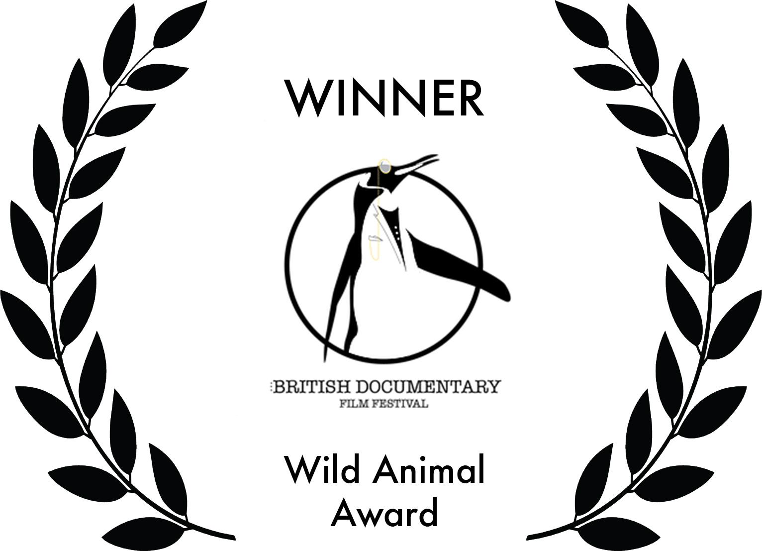 Wild Animal Award.jpg
