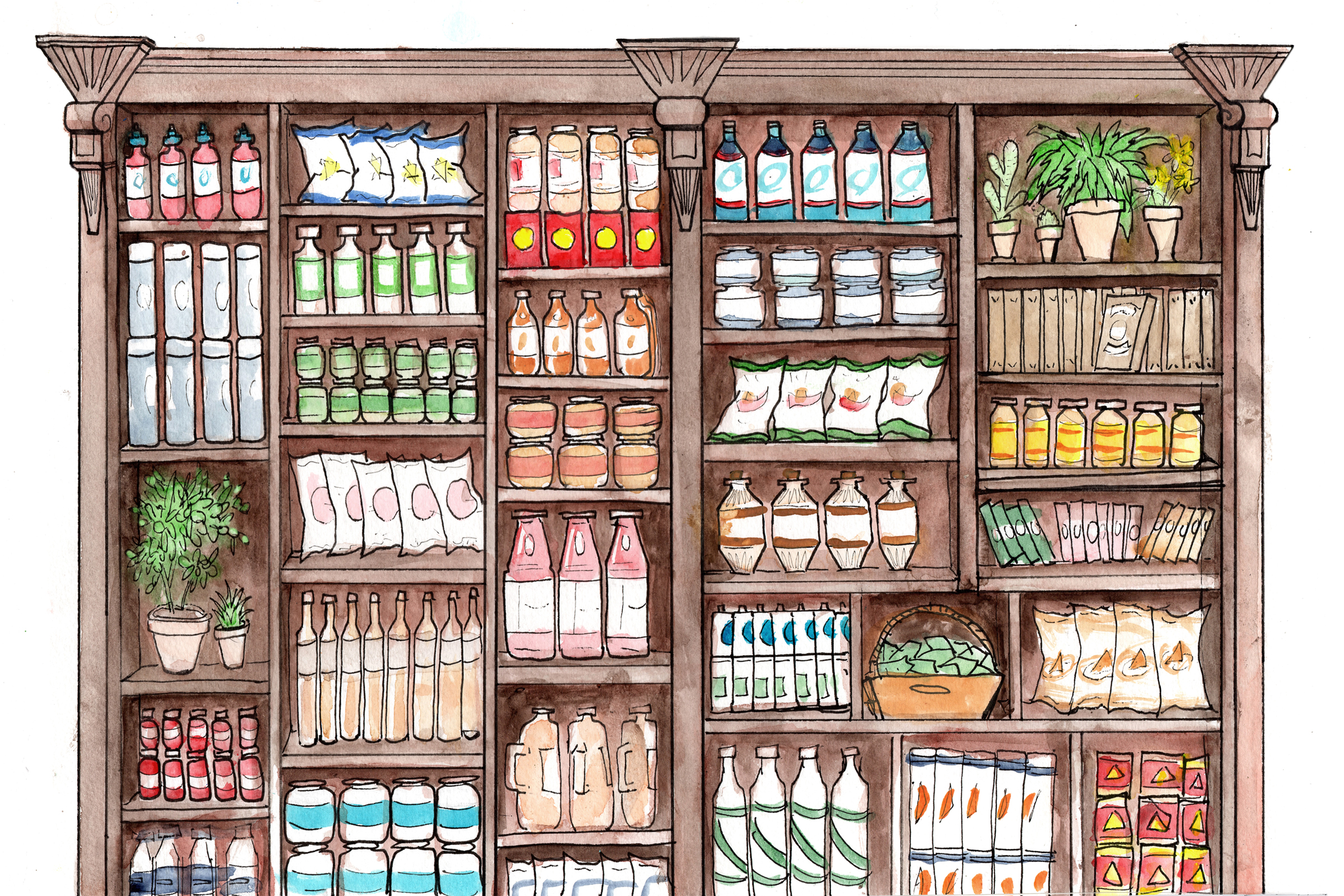 Shelf Illustration for SCB.jpg