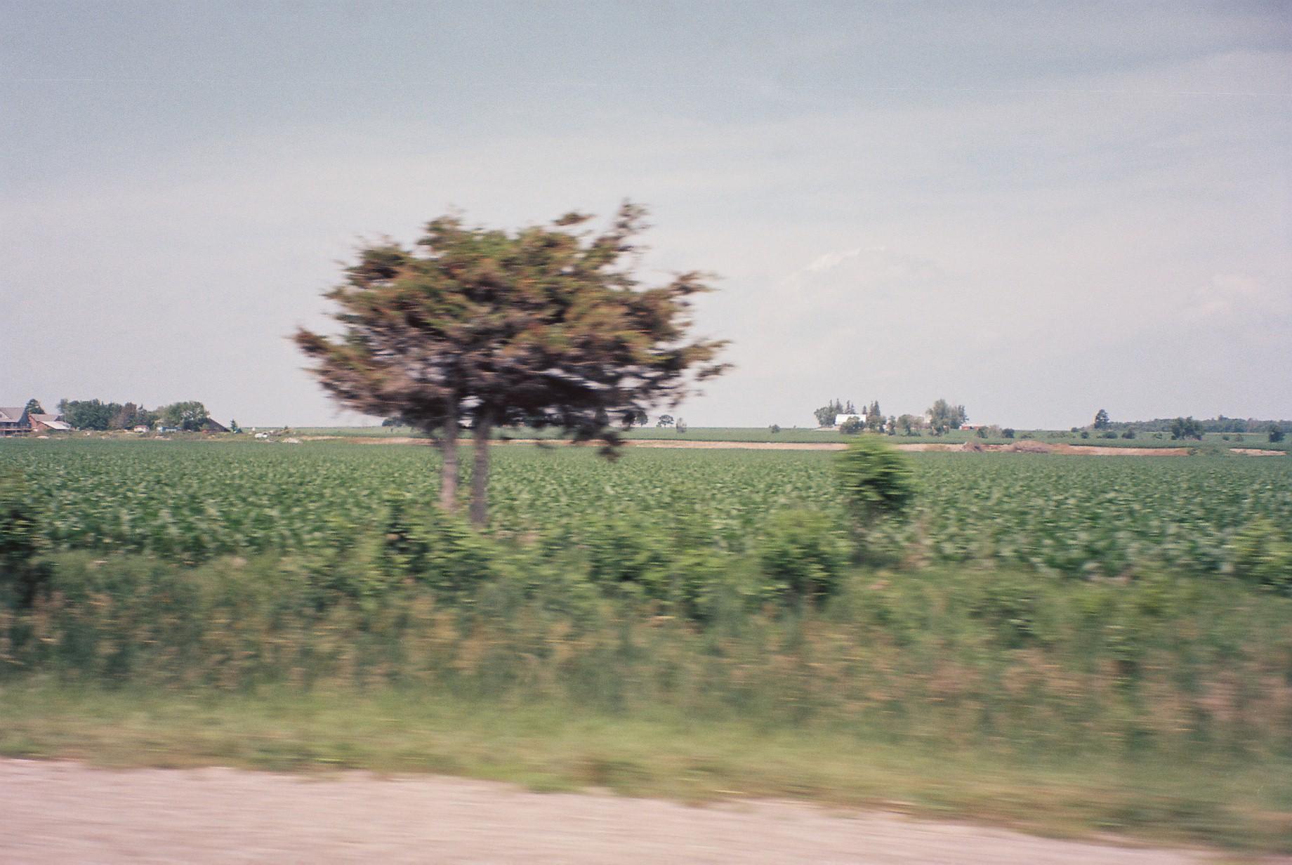 untitled shoot-3710137.JPG