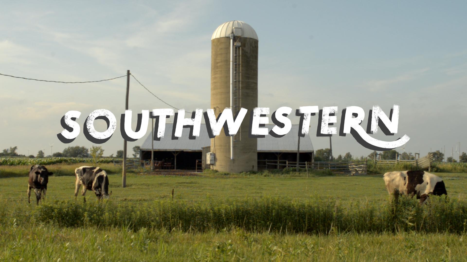 southwestern thumbnail.jpg