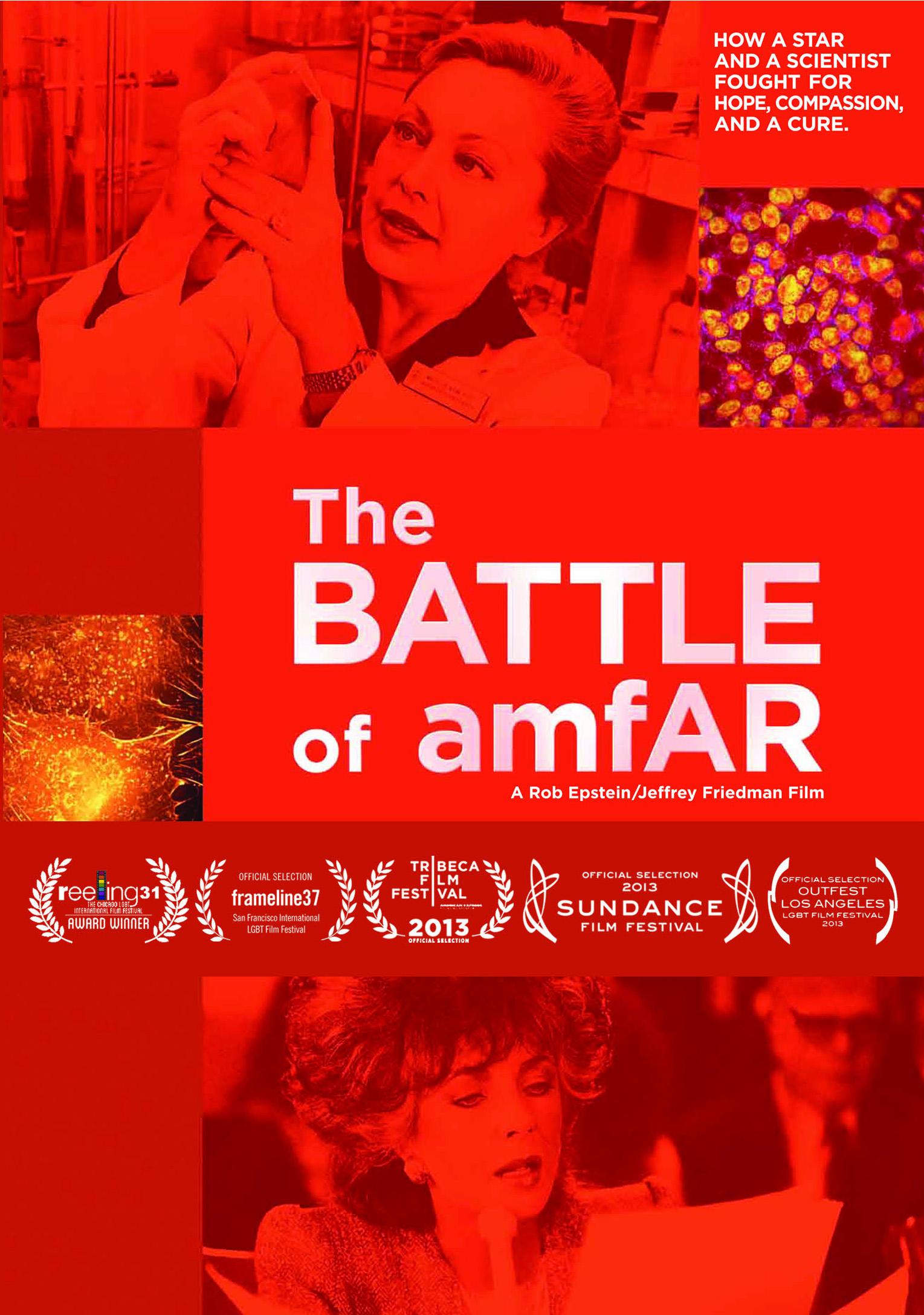 The Battle of Amfar_DVDcover.jpg