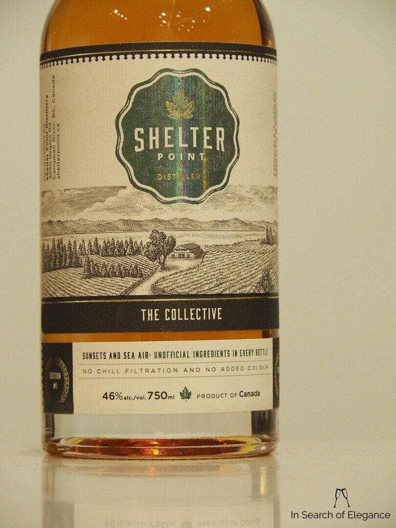 Shelter Point The Collective 1.jpg