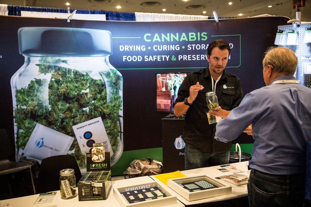 'Suits' and 'Stoners' Are Fighting for the Soul of the Weed Industry -