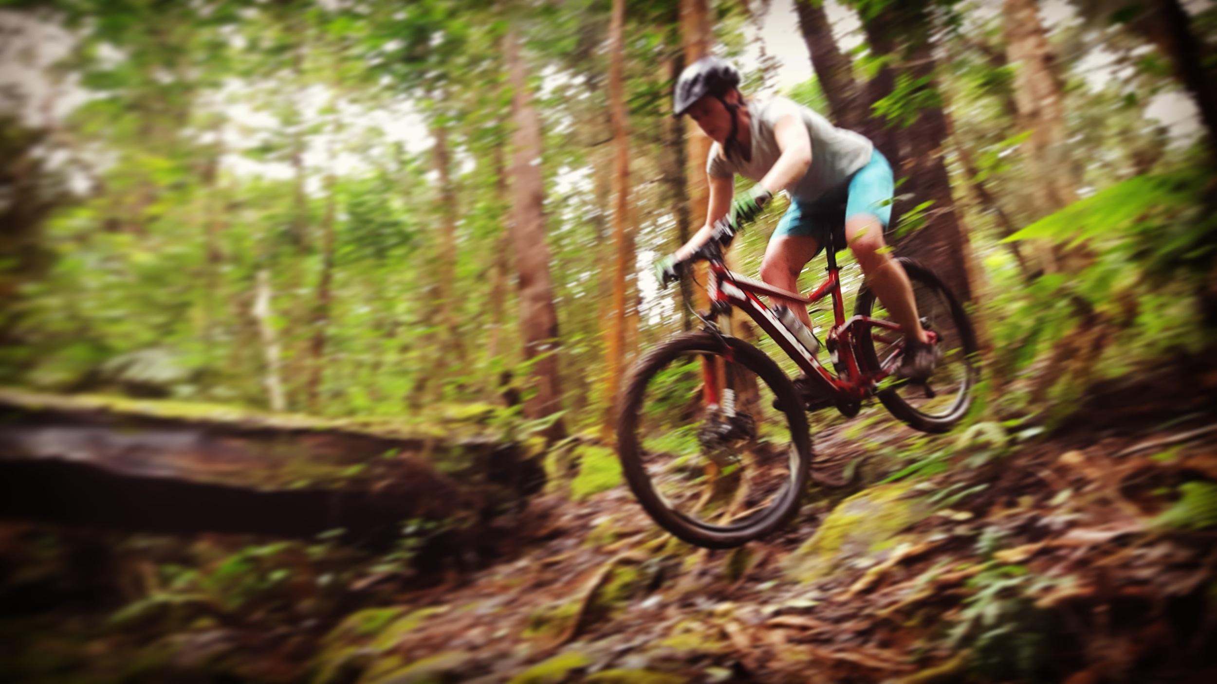 Kalopa Trail