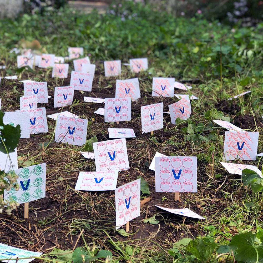 Dig for Victory (Vegetable Garden)