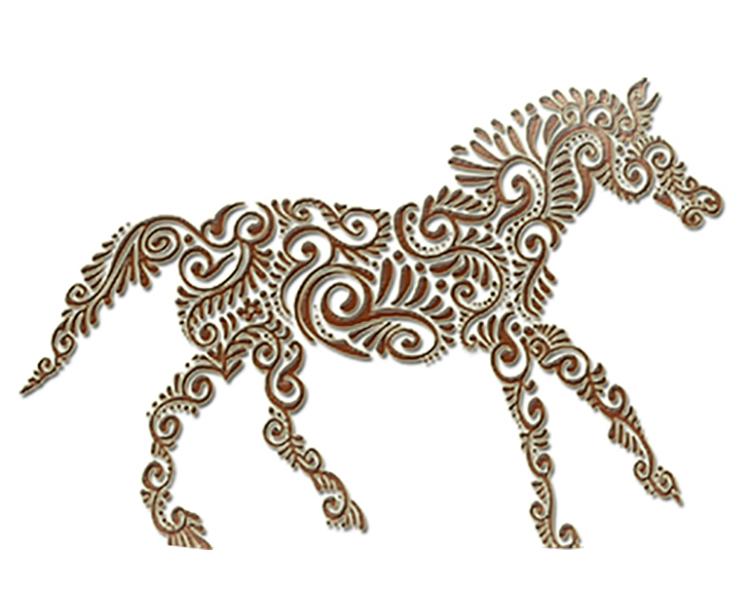 pony.jpg