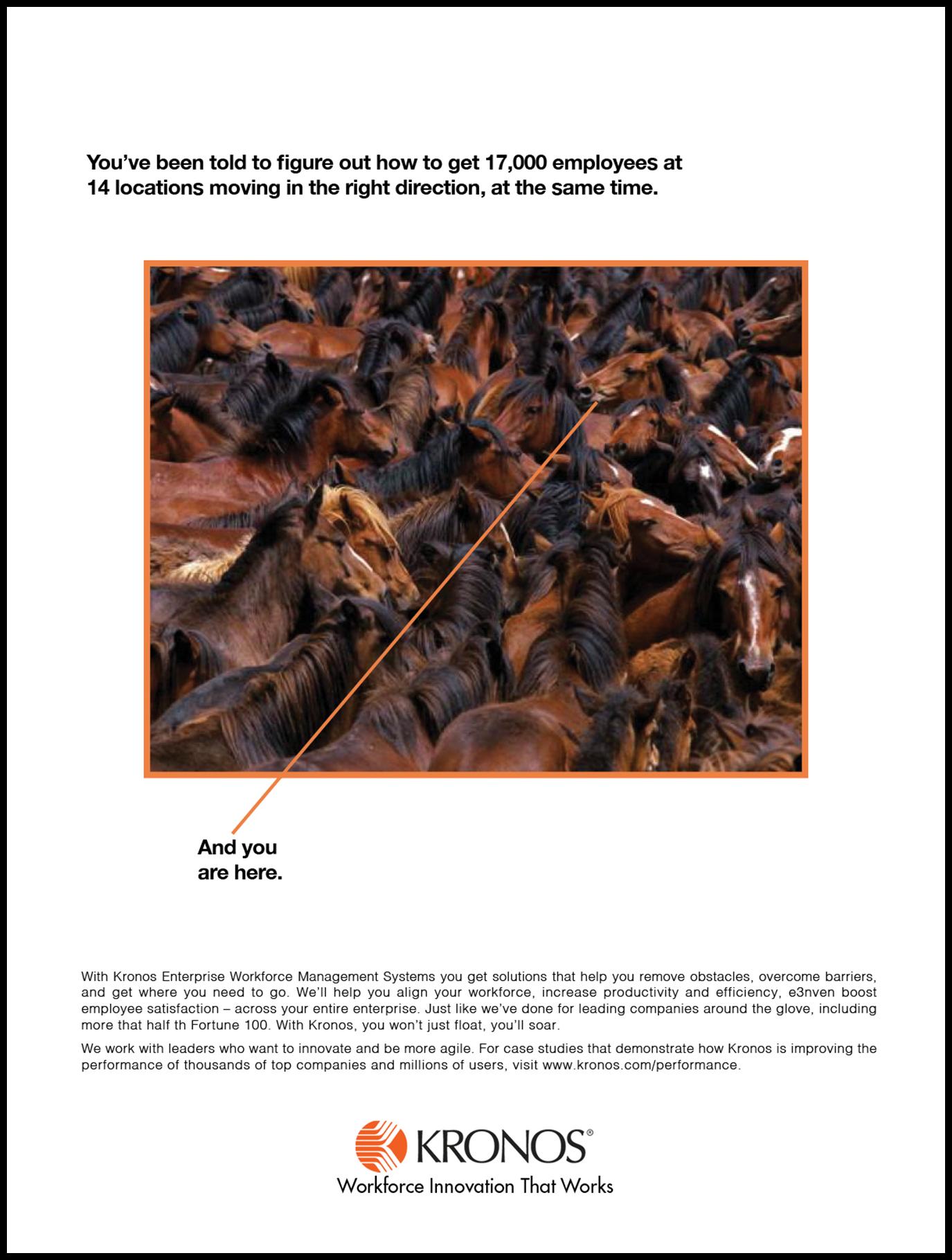 Kornos Horses Ad.jpg