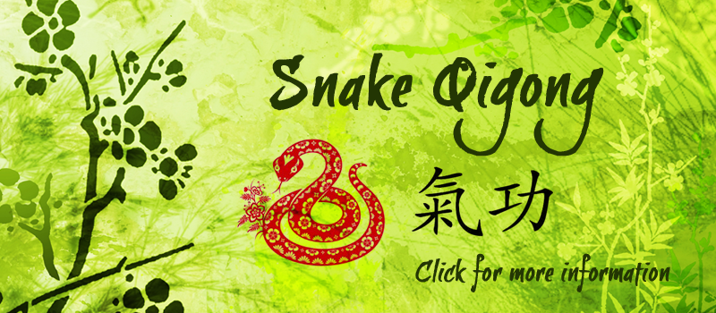 snakeqigong.png