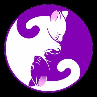 cat-1539610__340.png