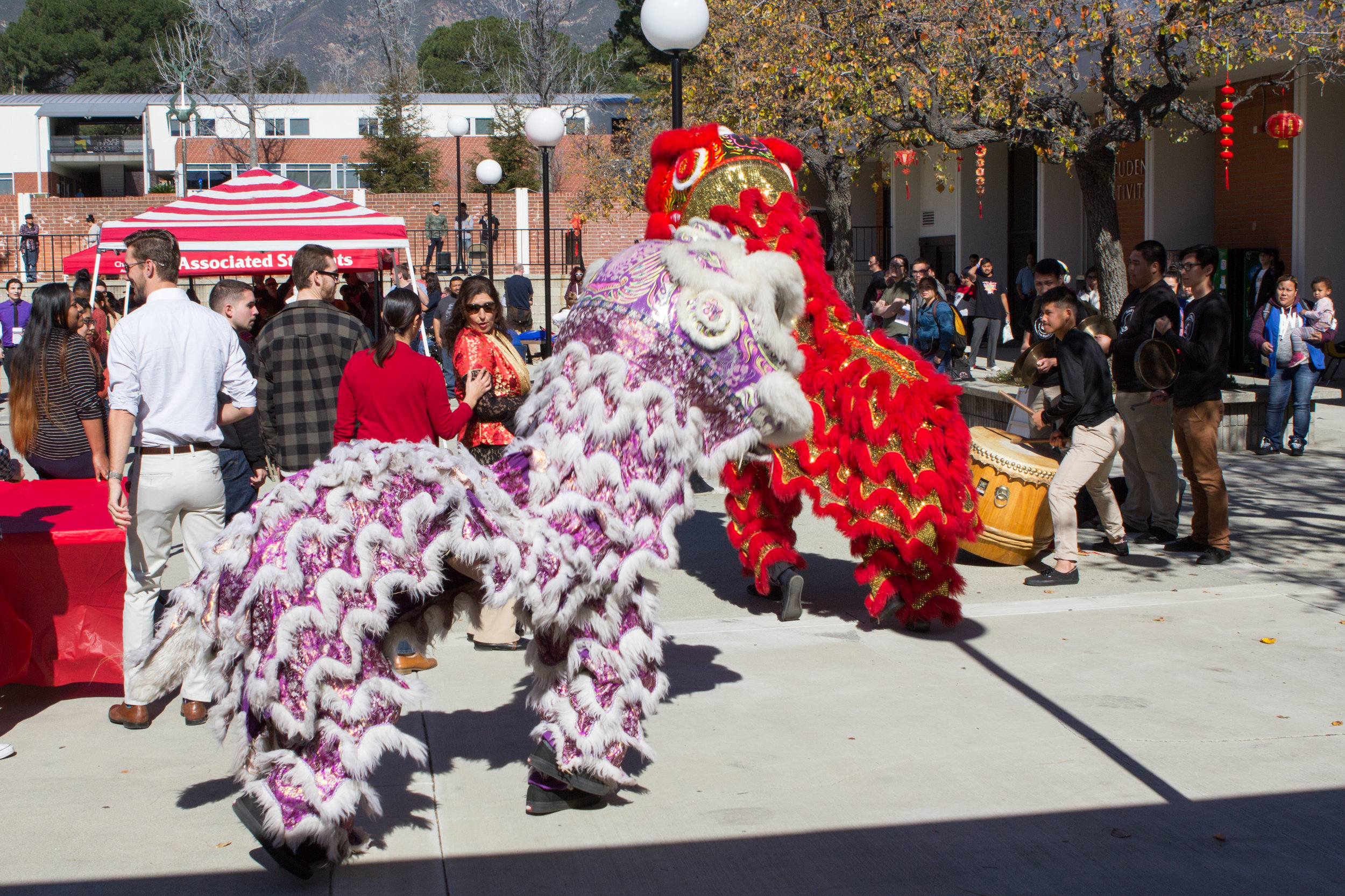 Lion dancers enter the East Quad while musicians perform accompanying music on   Wednesday, Feb. 1, 2017. Photo by Christopher Santee.