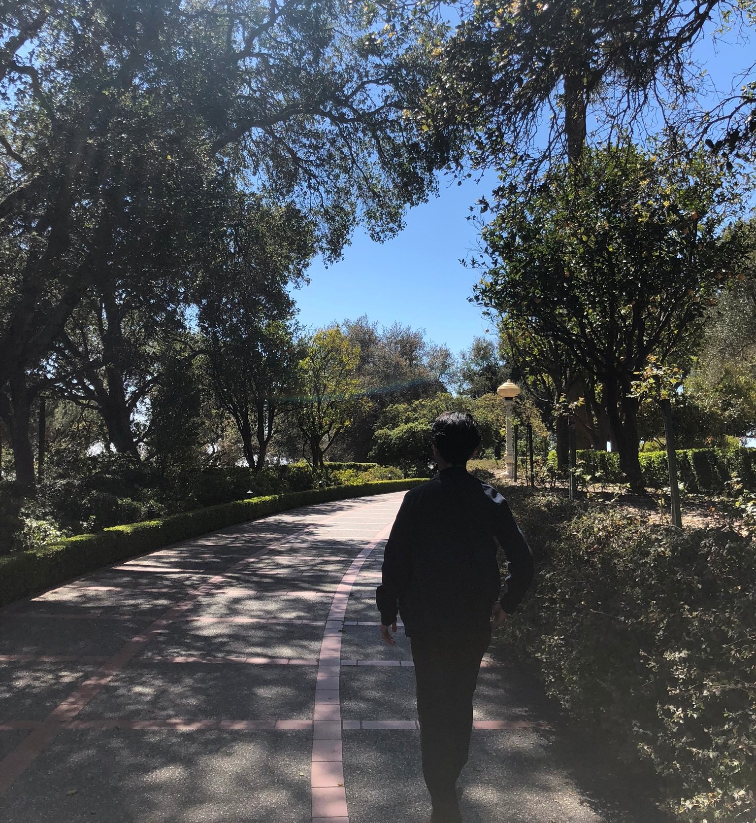 Anthony Pong strolls around Hearst Castle, looking at the sights. Photo by Emma Donnelly.