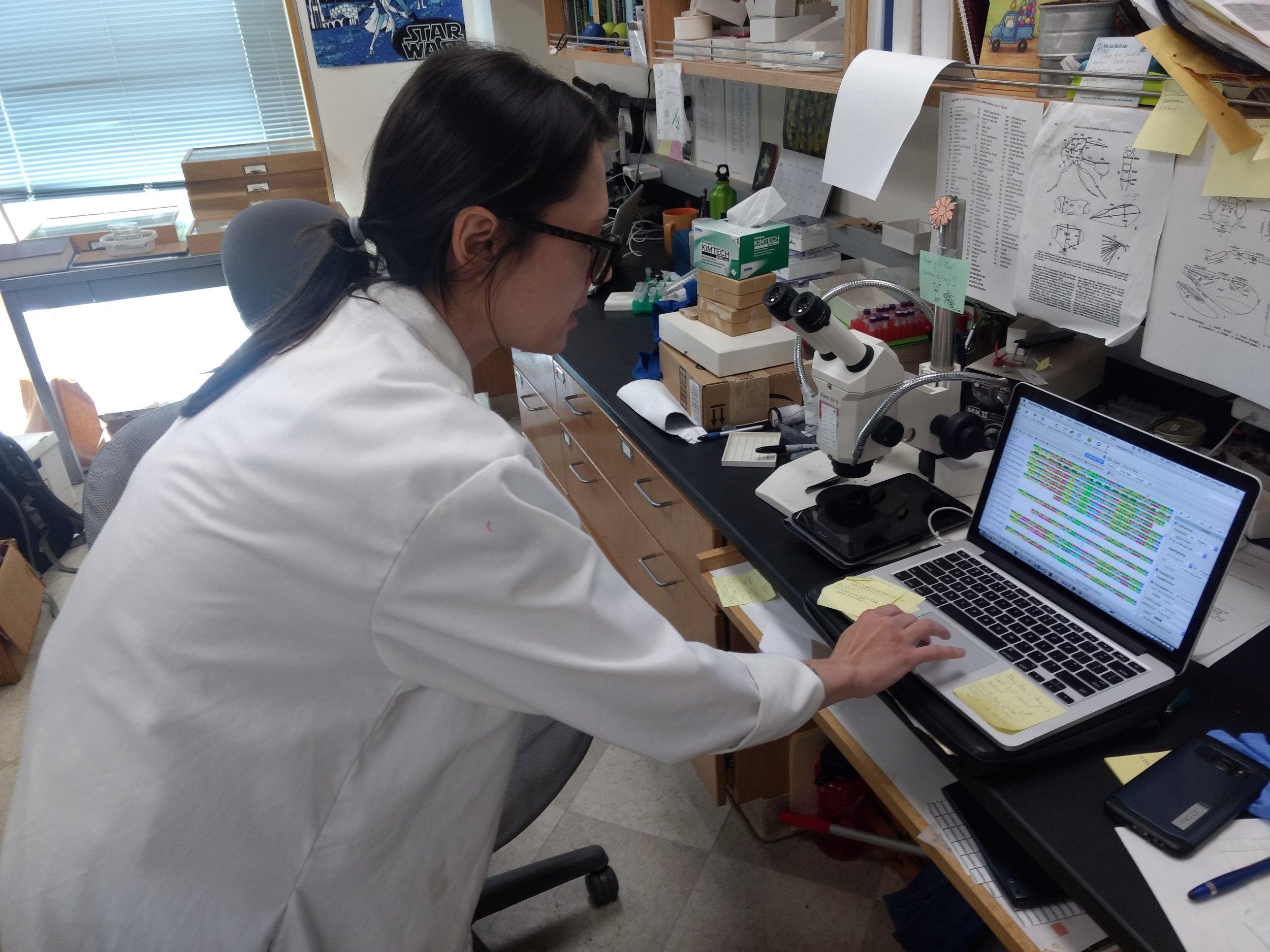 Krissy Dominguez showing DNA sequences.