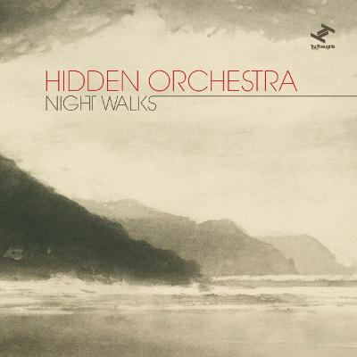 """Night Walks  (2x12""""LP/CD/Digital)  Tru Thoughts 2010"""