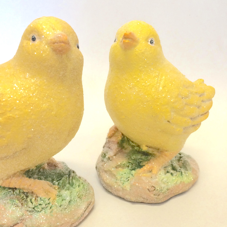twin chicks.jpg