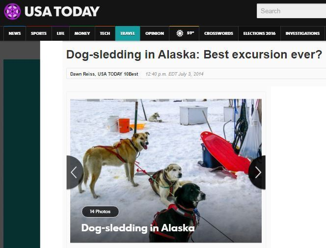 Dog sled V3.jpg