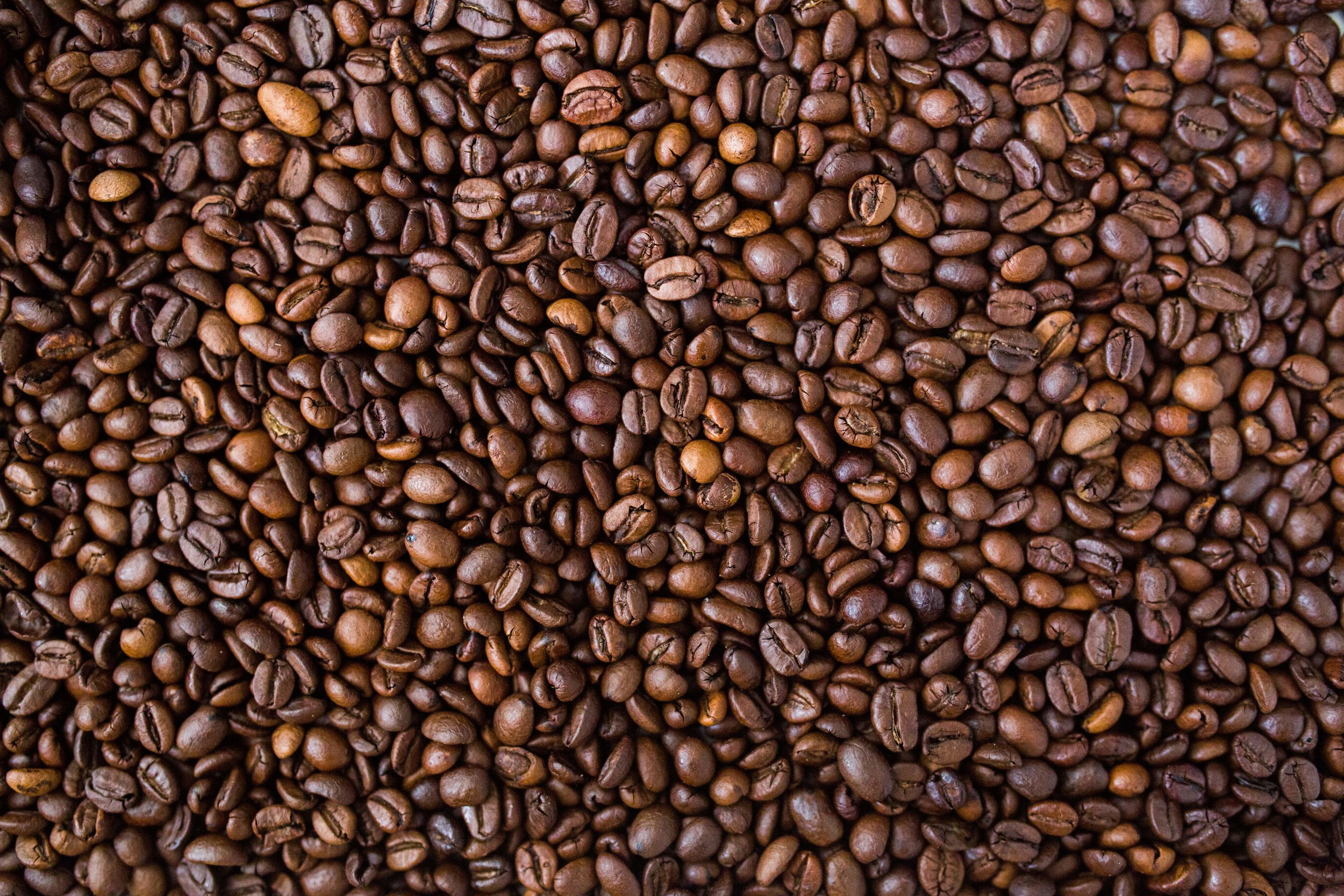 Fatty Coffee   Healing Nutrient: Saturated Fat   Fuel for the Brain     Fatty Coffee Recipe