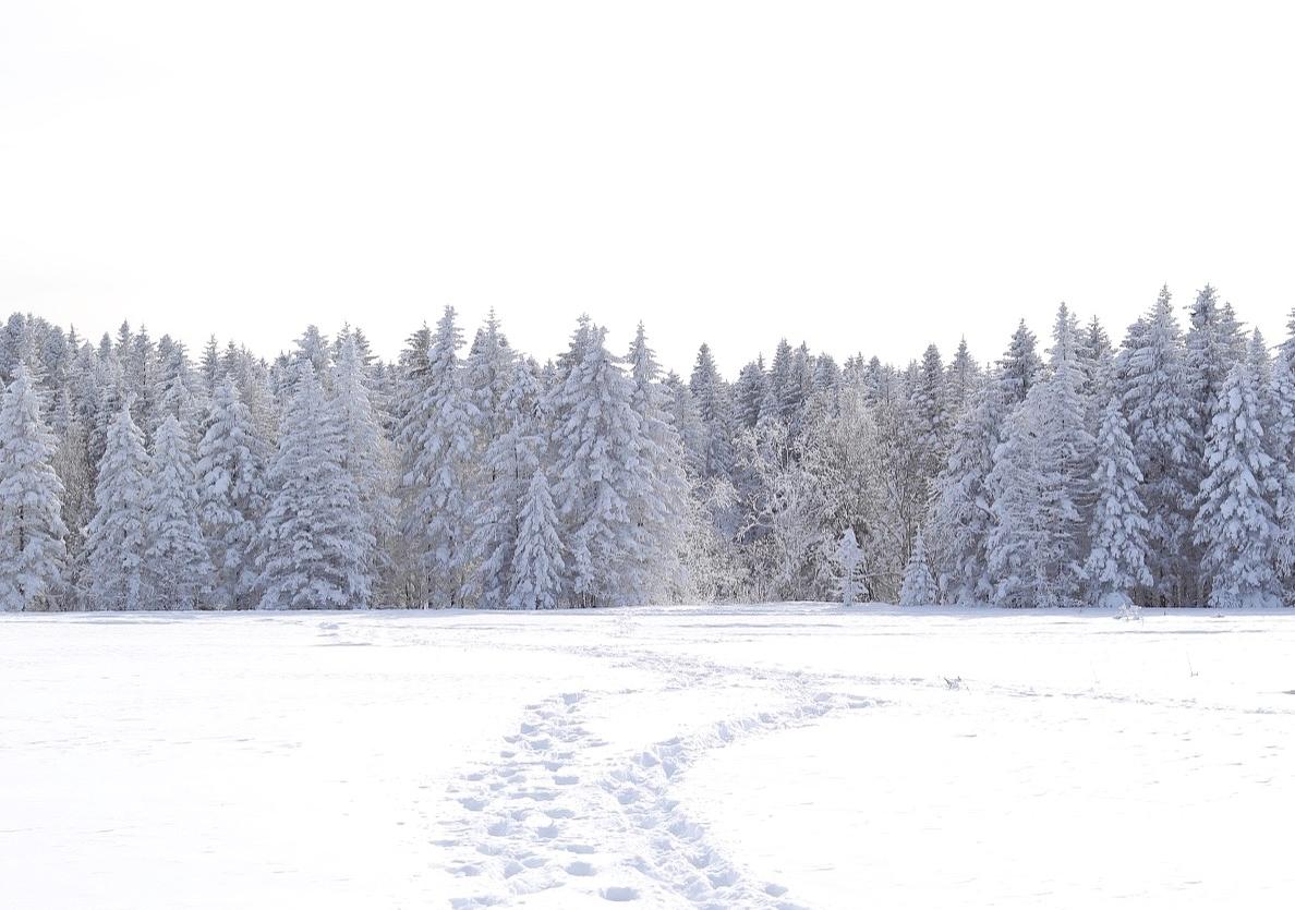 Jilin-Winter-NikiCsanyi