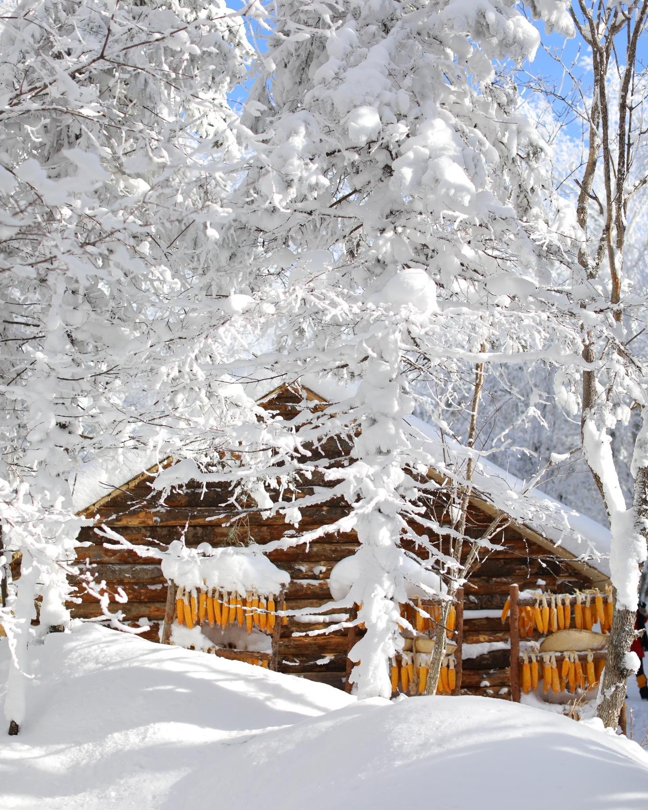 Jilin-Winter2-NikiCsanyi