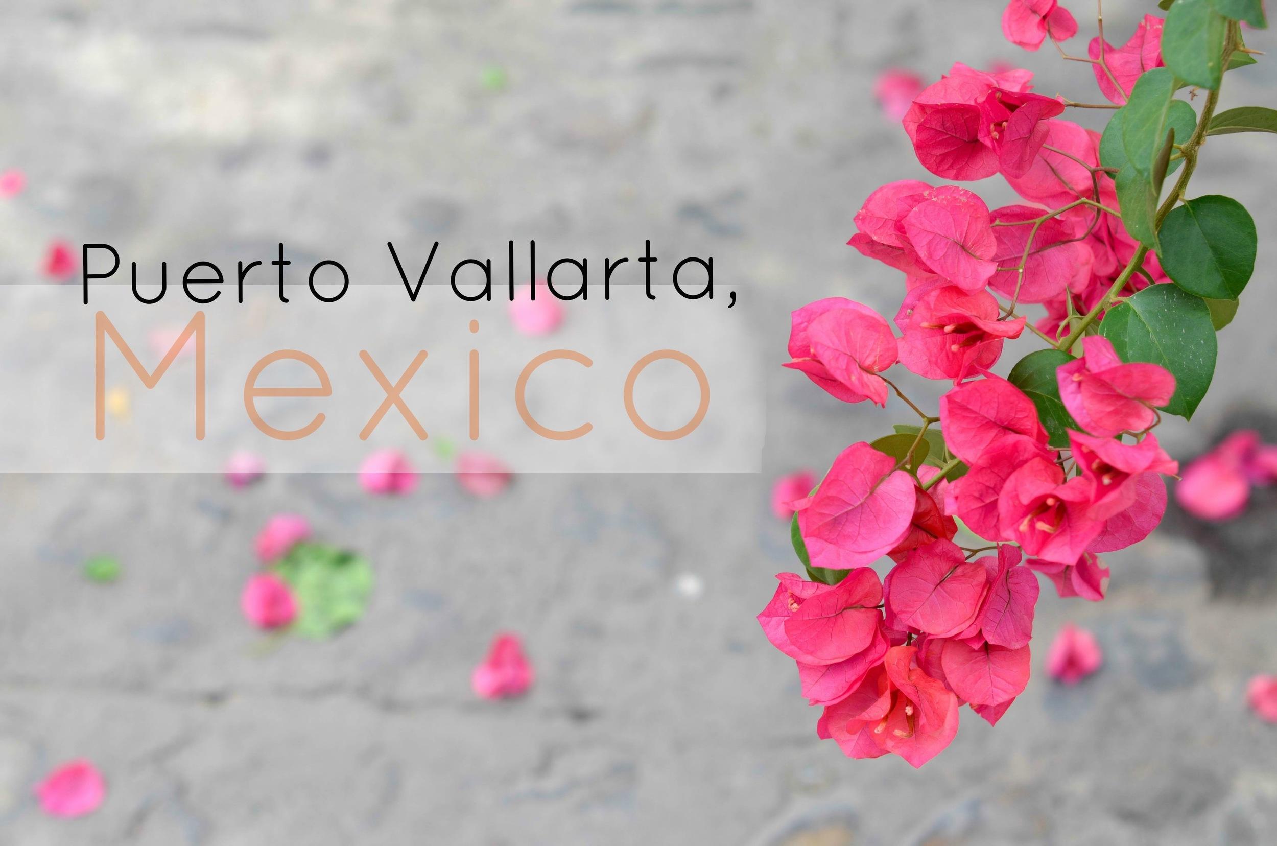 Puerto Vallarta Flowers.jpg