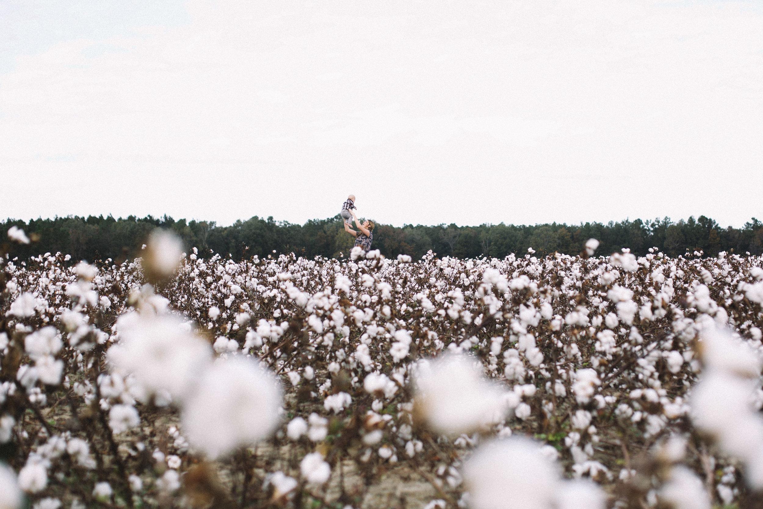 Cotton Field Maternity 17 Weeks  (3 of 28).jpg