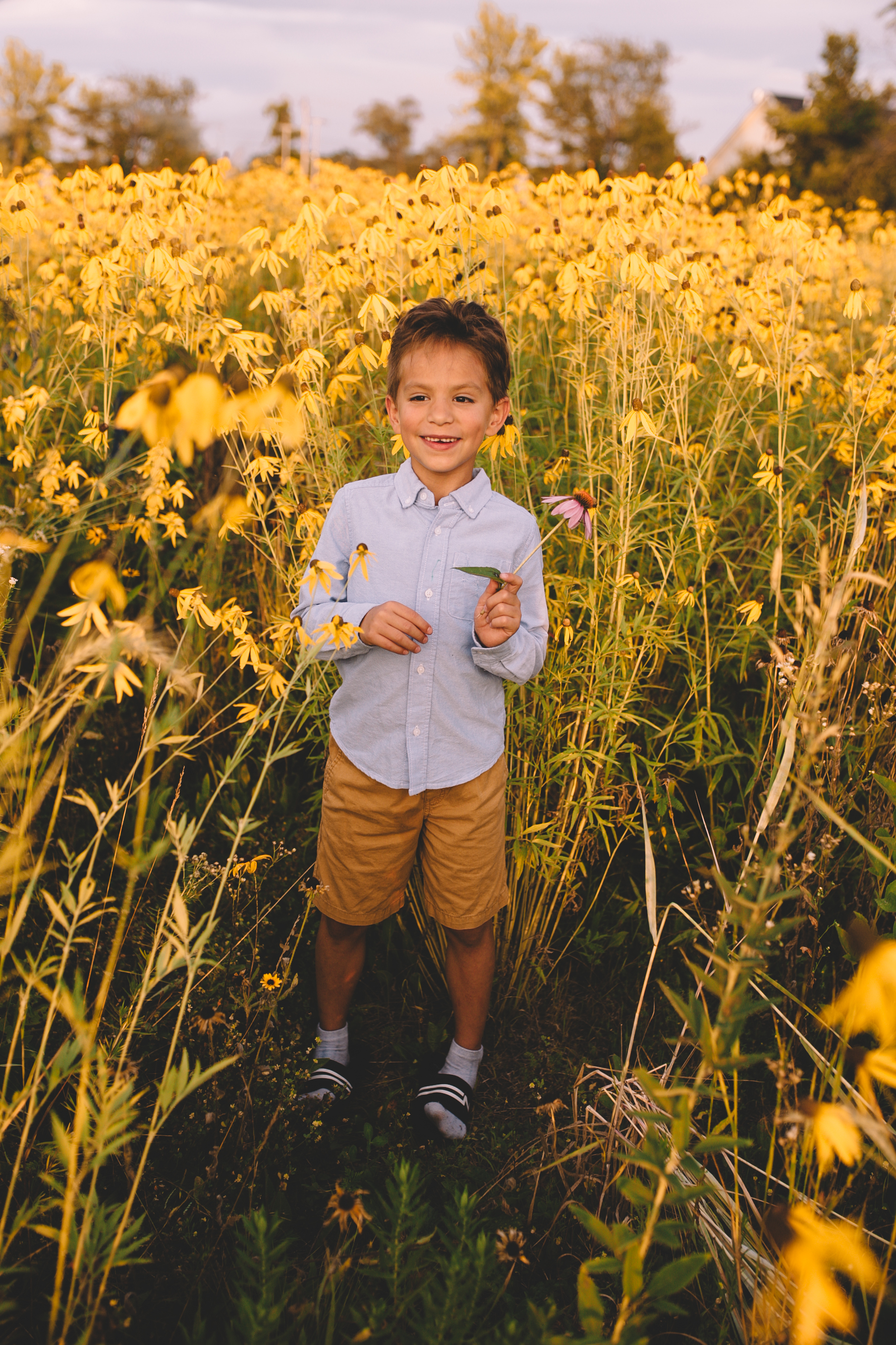 Golden Flower Field Mini Session Indianapolis IN (49 of 58).jpg