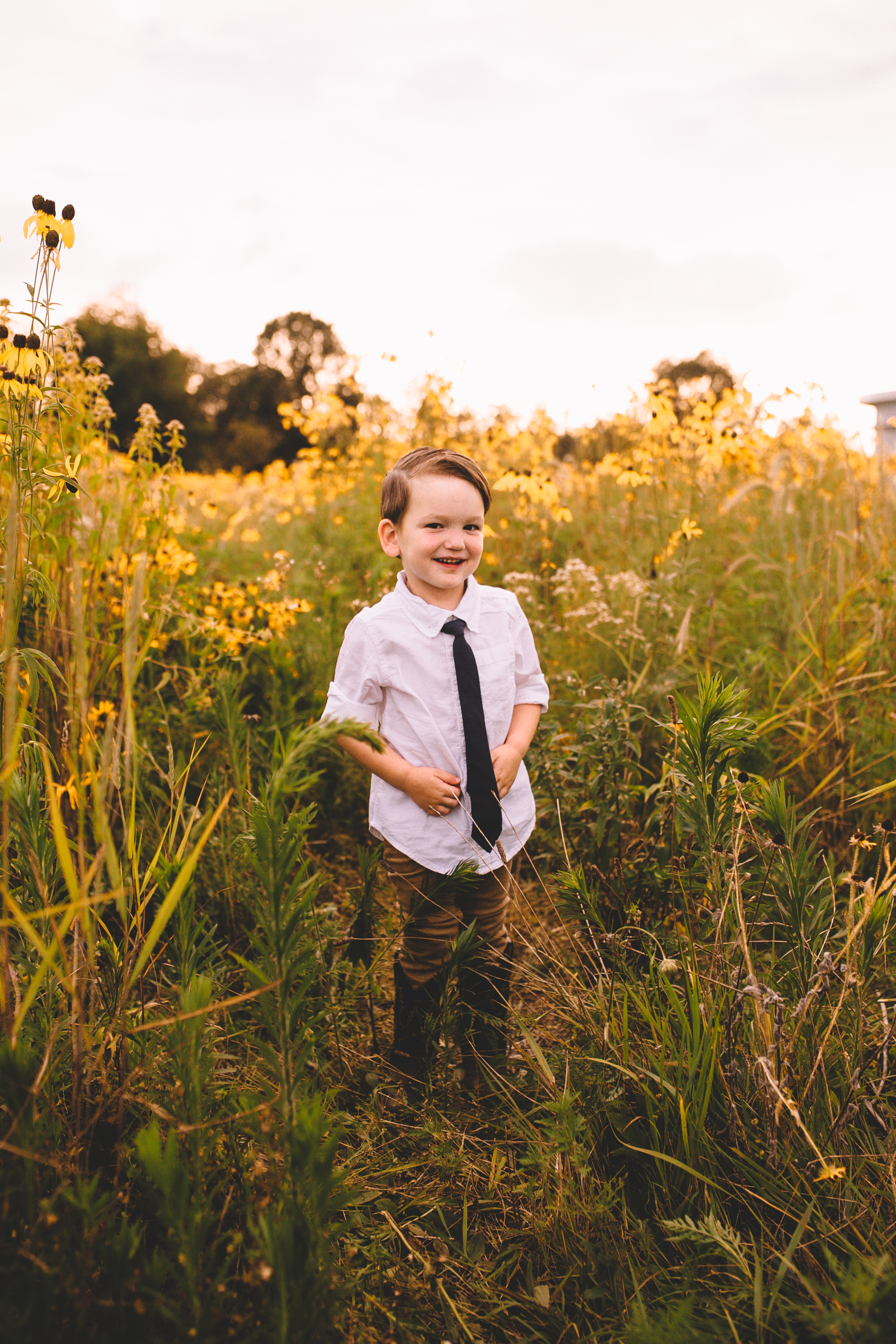 Golden Flower Field Mini Session Indianapolis IN (30 of 58).jpg