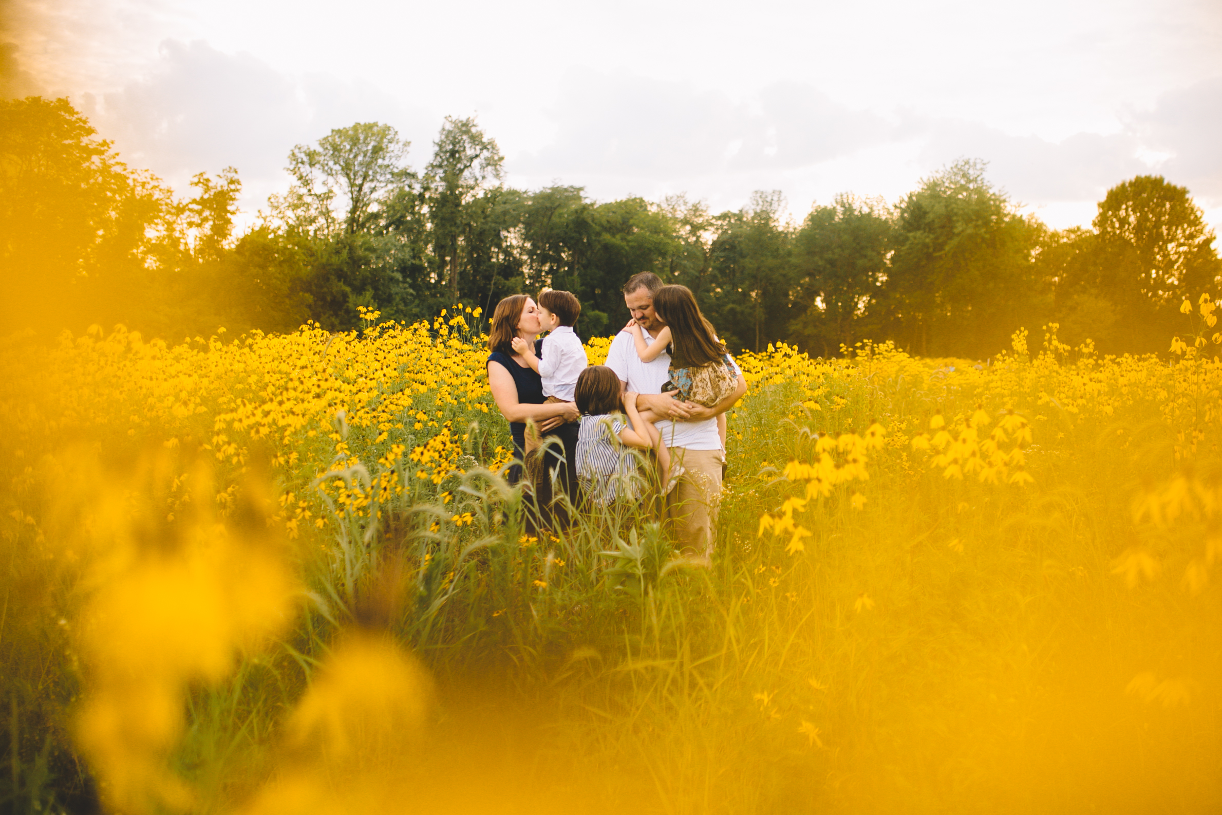 Golden Flower Field Mini Session Indianapolis IN (22 of 58).jpg