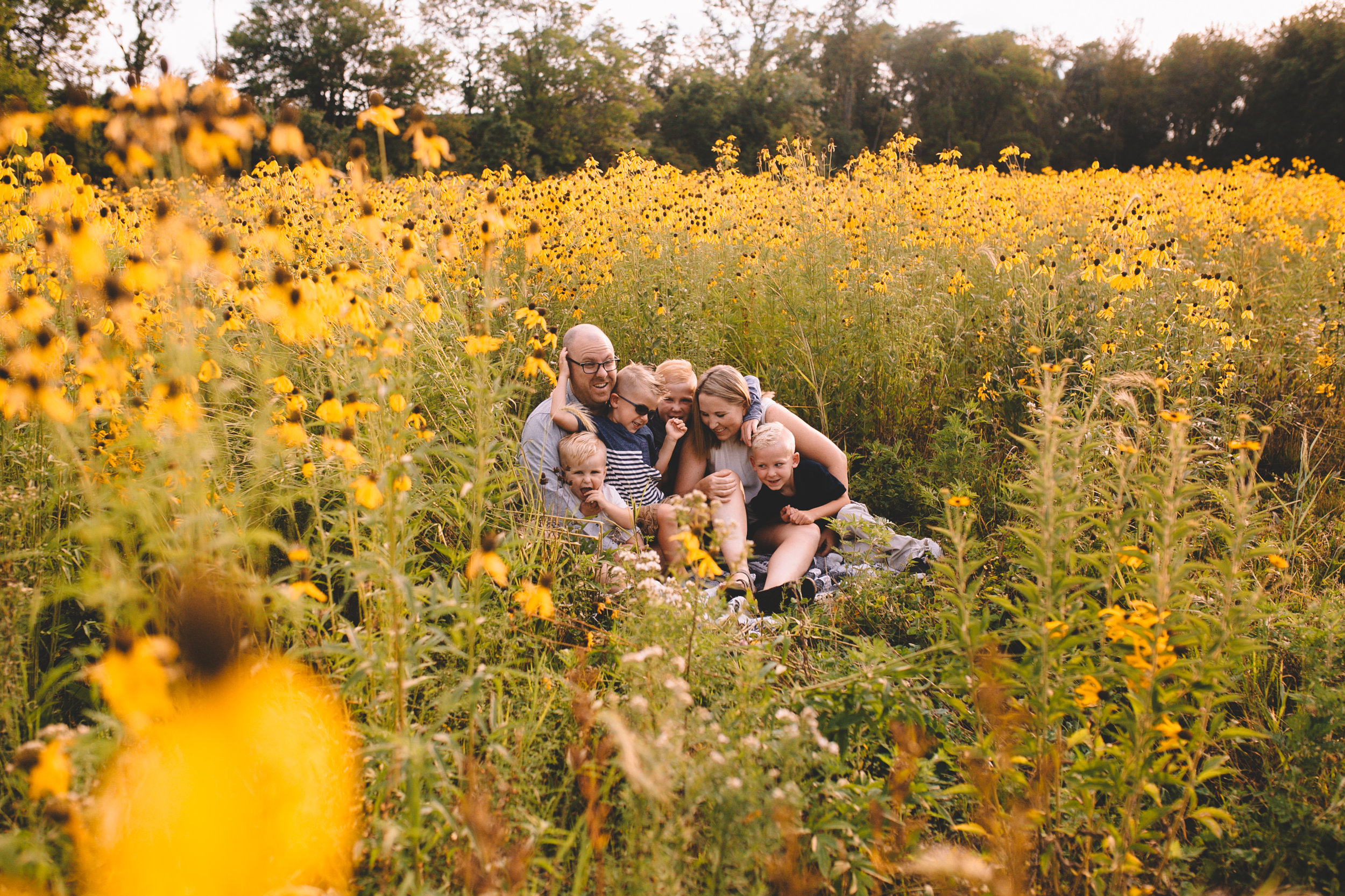 Golden Flower Field Mini Session Indianapolis IN (1 of 58).jpg