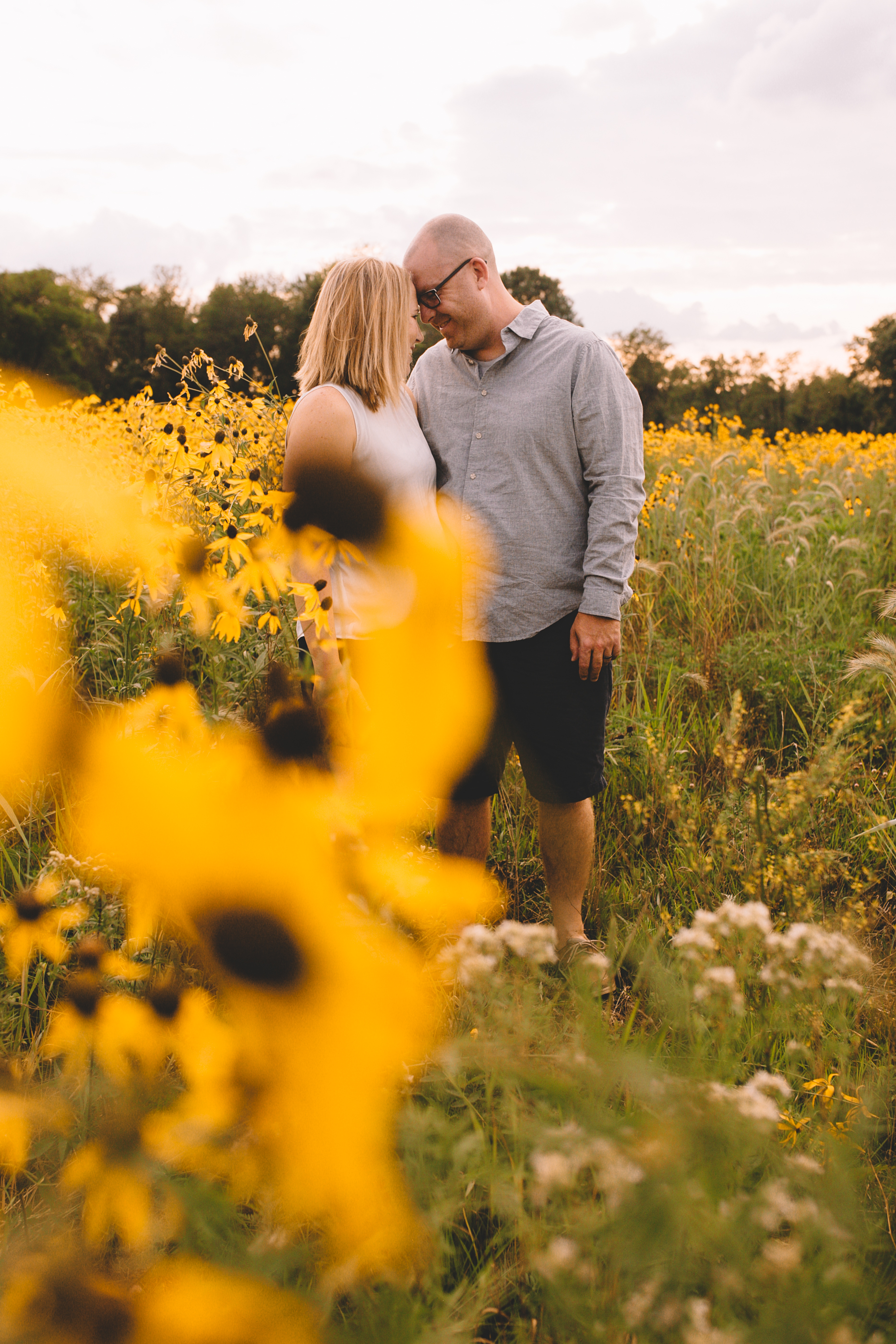 Golden Flower Field Mini Session Indianapolis IN (10 of 58).jpg