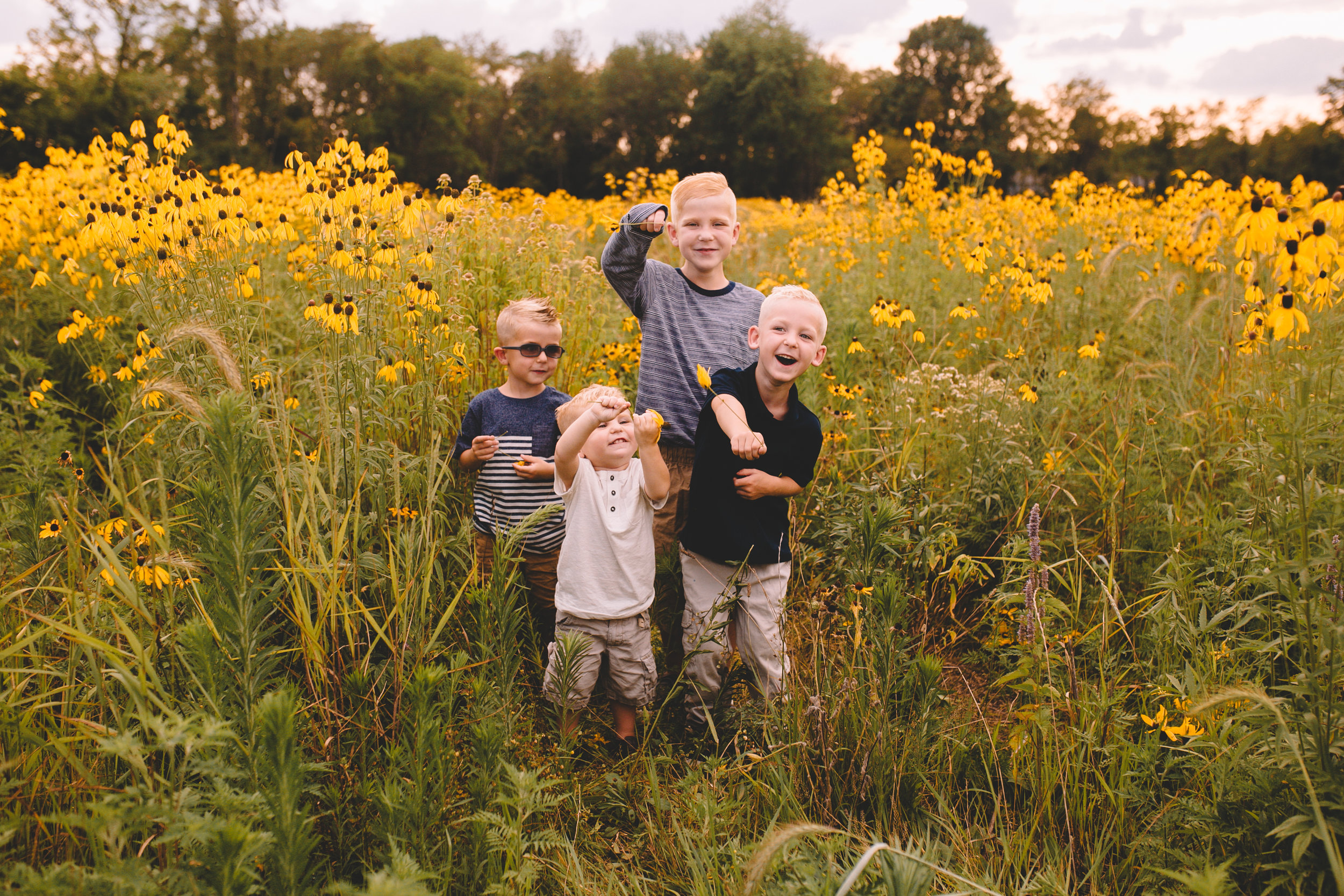 Golden Flower Field Mini Session Indianapolis IN (15 of 58).jpg