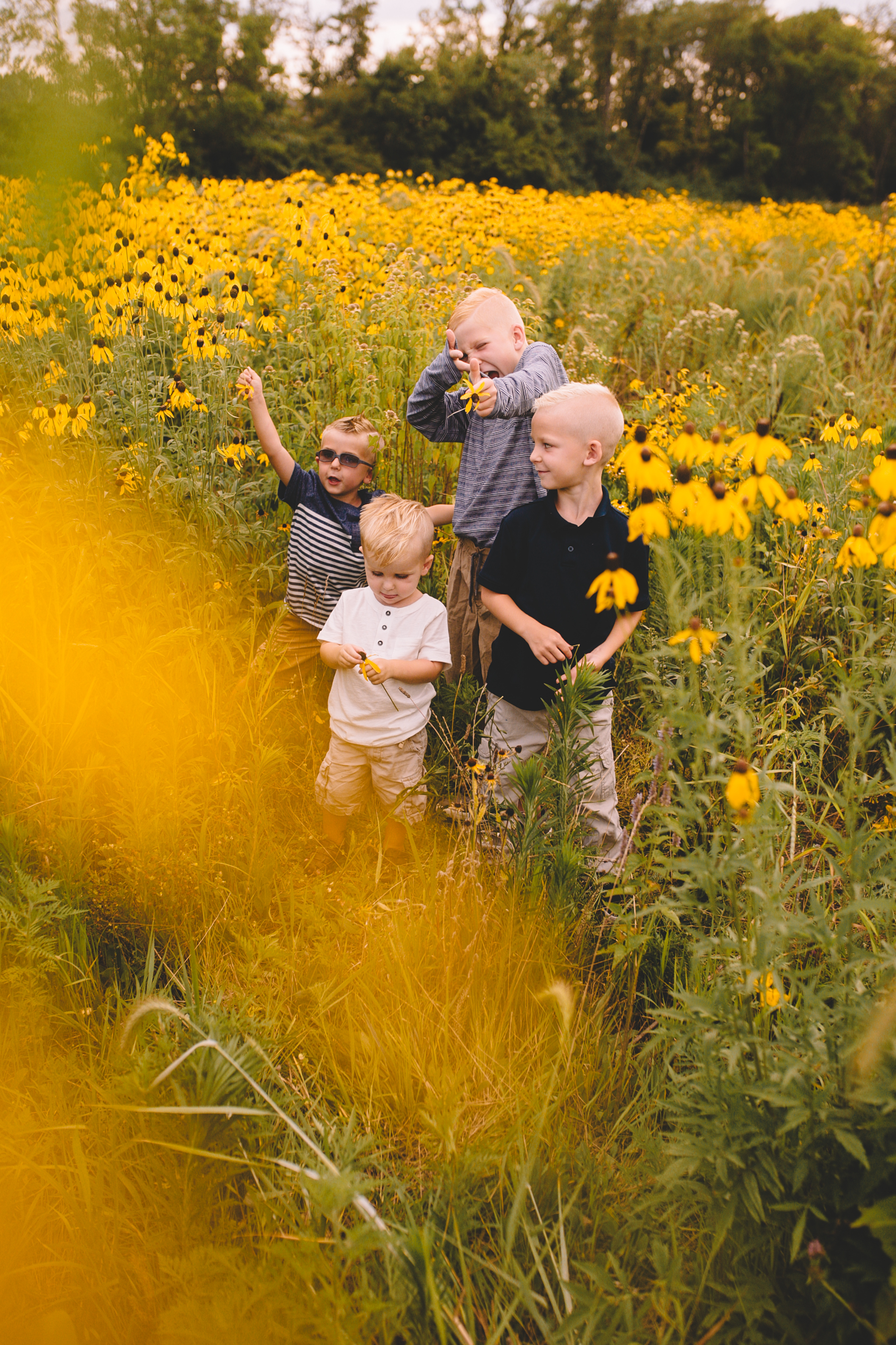 Golden Flower Field Mini Session Indianapolis IN (16 of 58).jpg