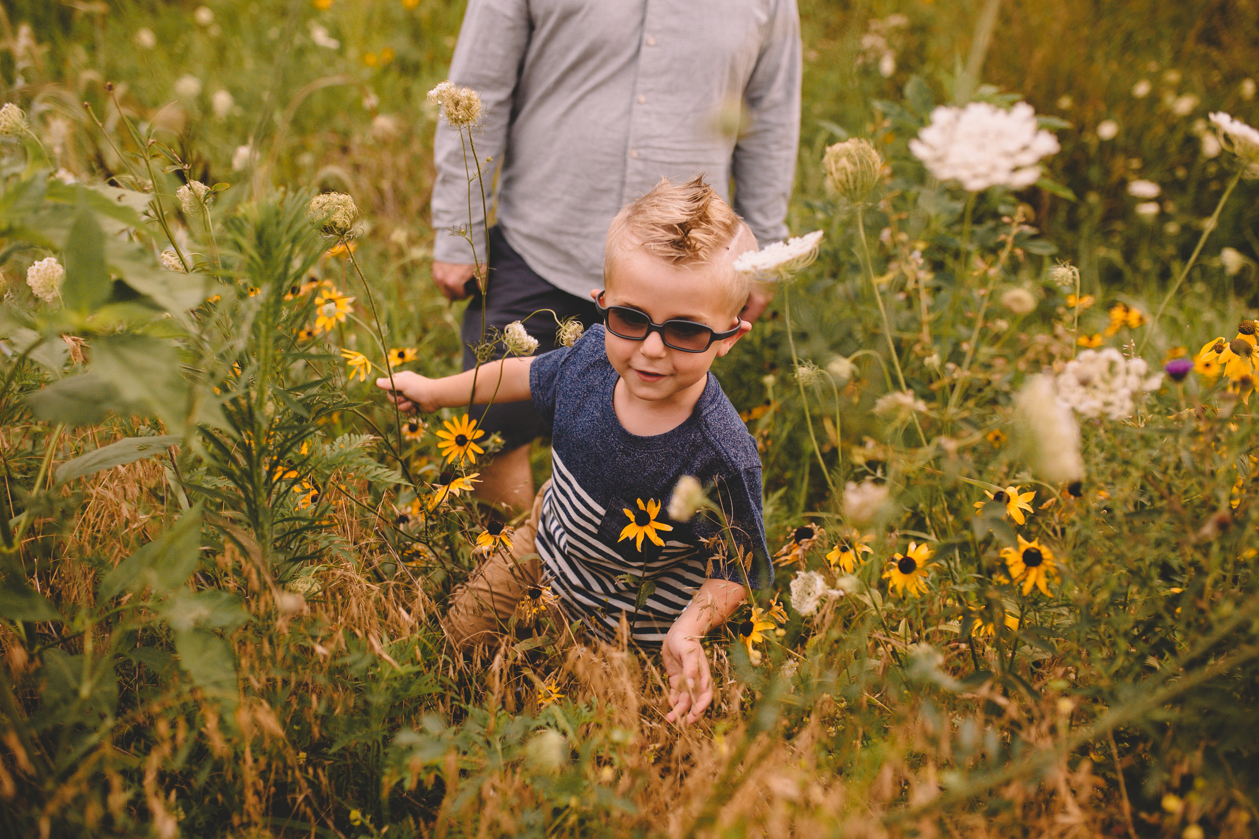 Golden Flower Field Mini Session Indianapolis IN (18 of 58).jpg