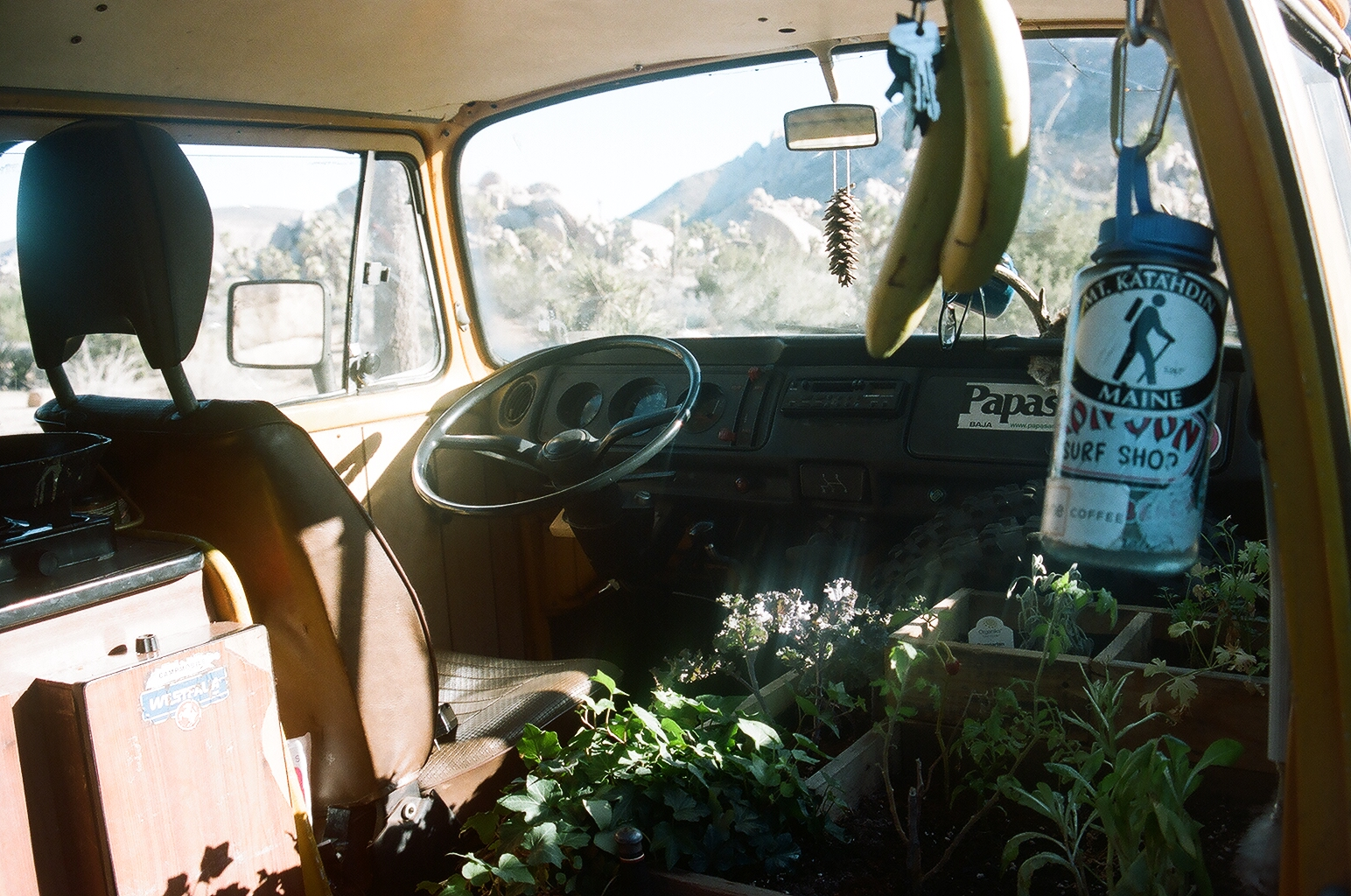 James' indoor garden. Not only does it provide food, but an organic smell for the whole van.