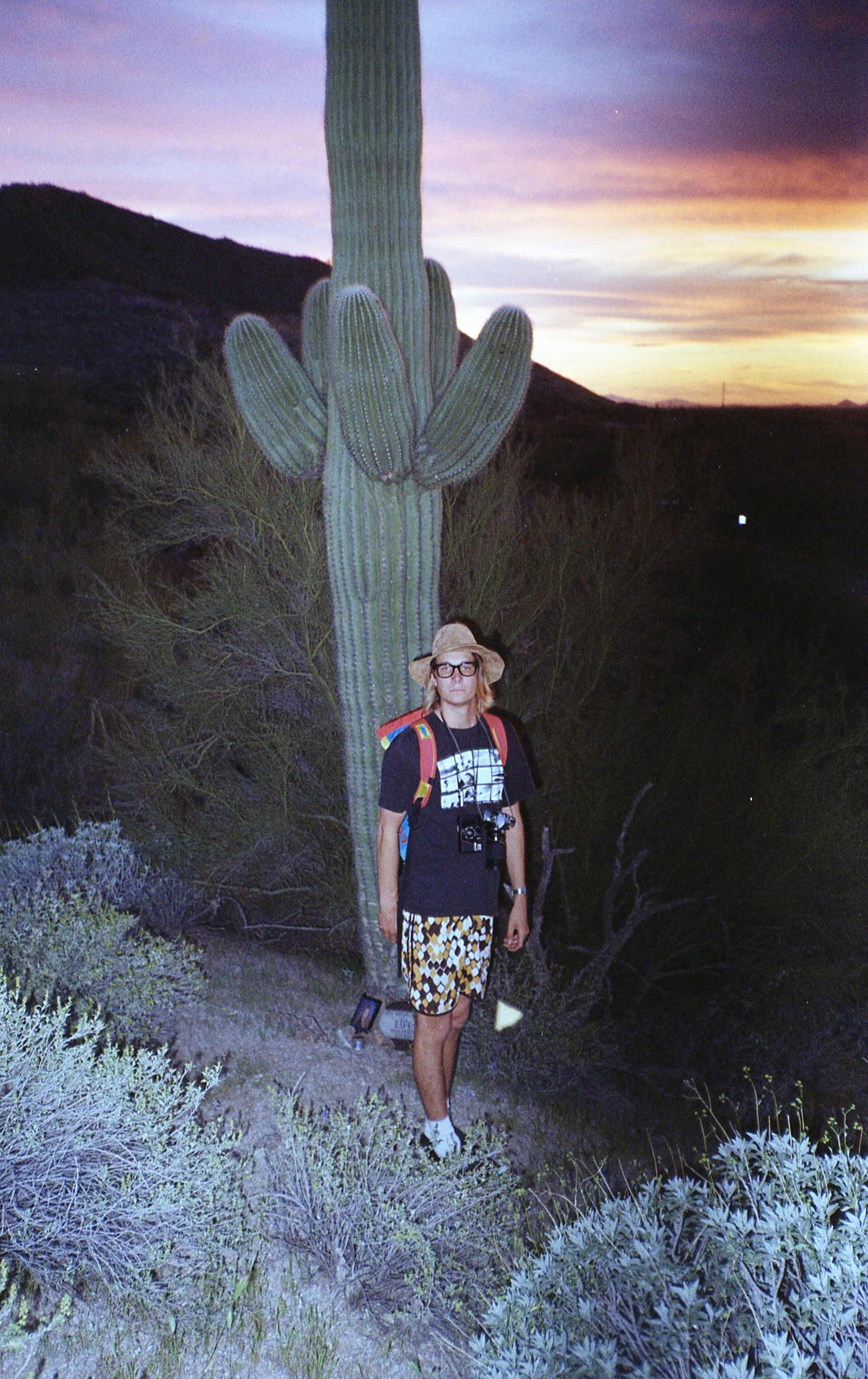 A memorial site was placed at the base of this giant saguaro.