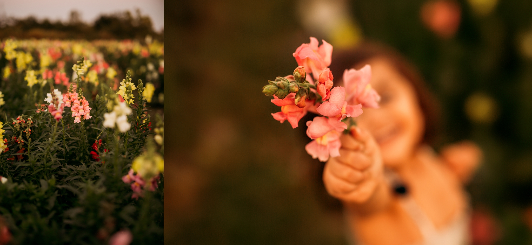 Bay-Area-Sonoma-Napa-California-Destination-Florida-family-wedding-Photographer-5.jpg