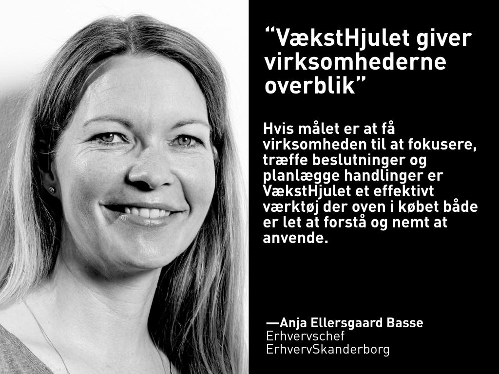 Anja Ellersgaard Basse, ErhvervSkanderborg