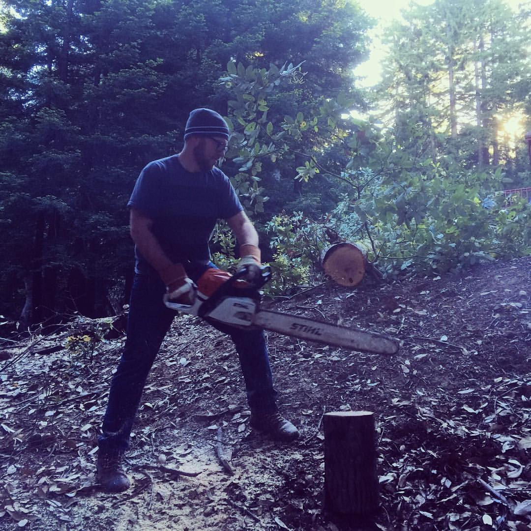Back in the states for a bit, and I learned how to cut down a tree today!! (at Boulder Creek, California)