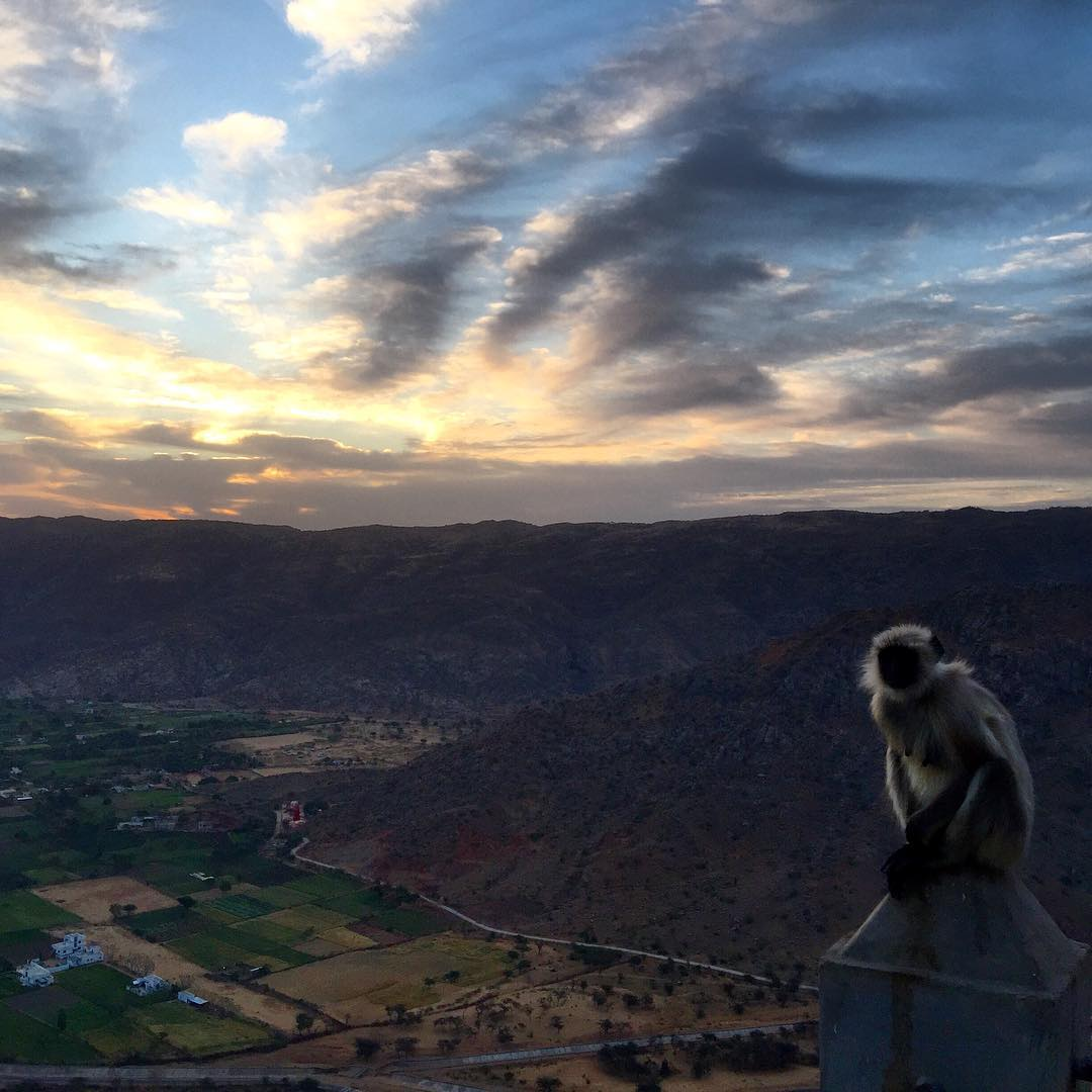 Sunrise in Pushkar ☀️#travel #india #sunrise #pushkar #monkey (at Puskar Rajasthan)