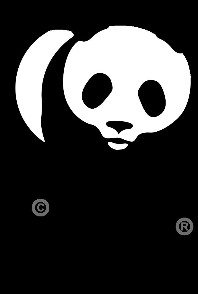 13 WWF.png