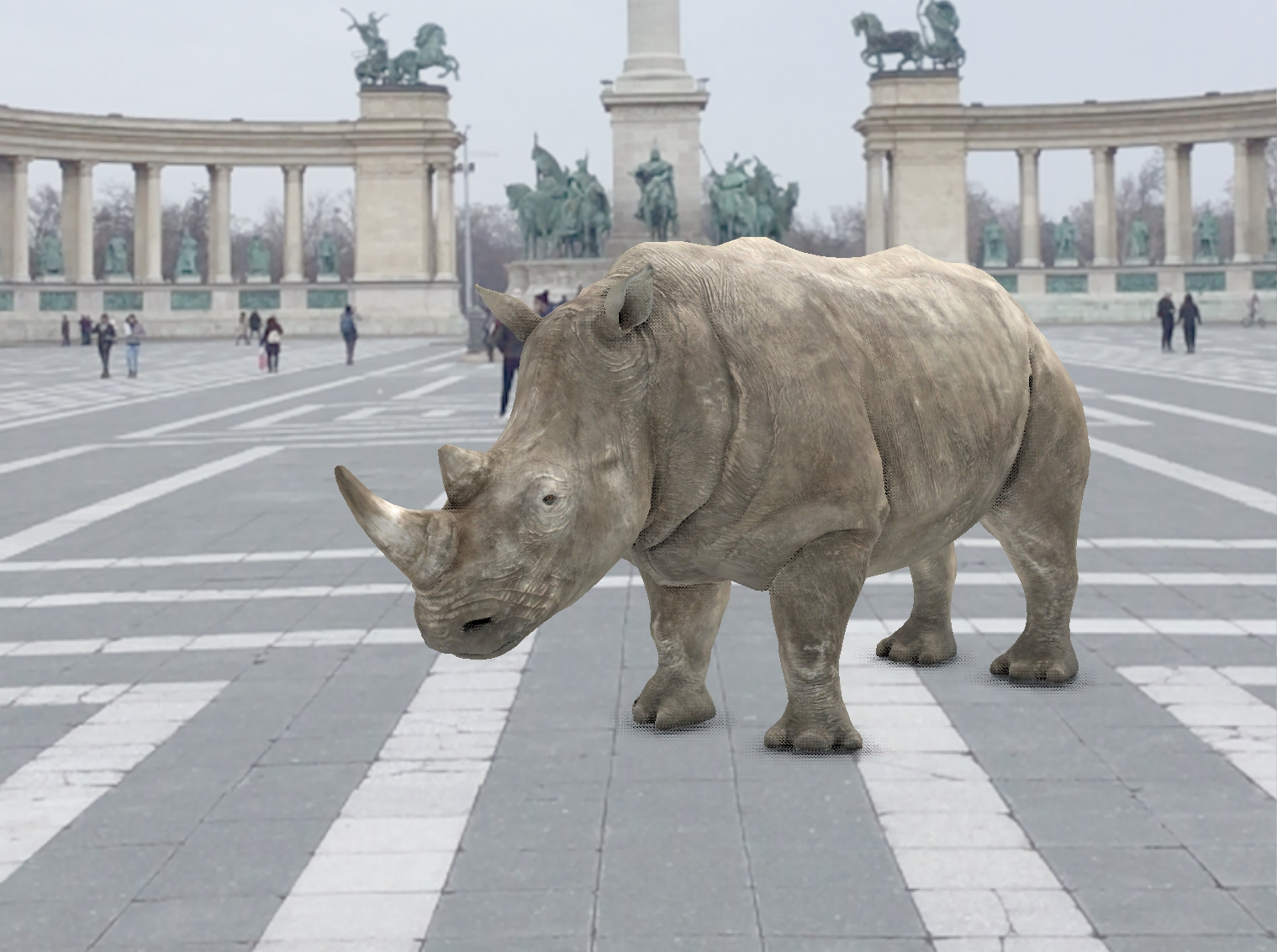 Testing the AR app – One of the last three Northern White Rhinos in the heart of Budapest