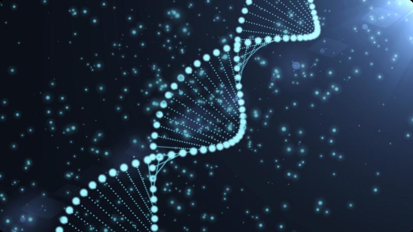 Image DNA.png