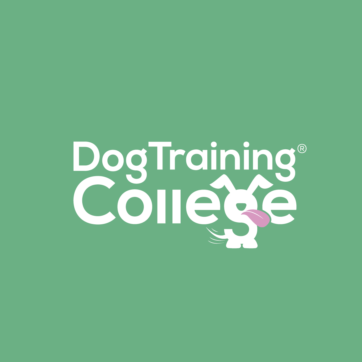 Dog Training College Brand Guidelines 2019-07.jpg