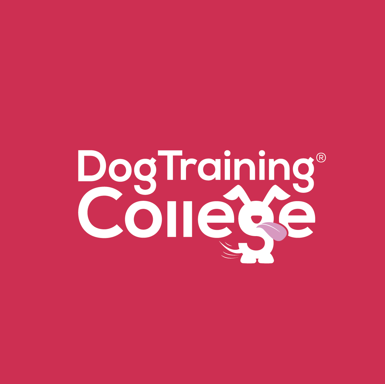Dog Training College Brand Guidelines 2019-06.jpg
